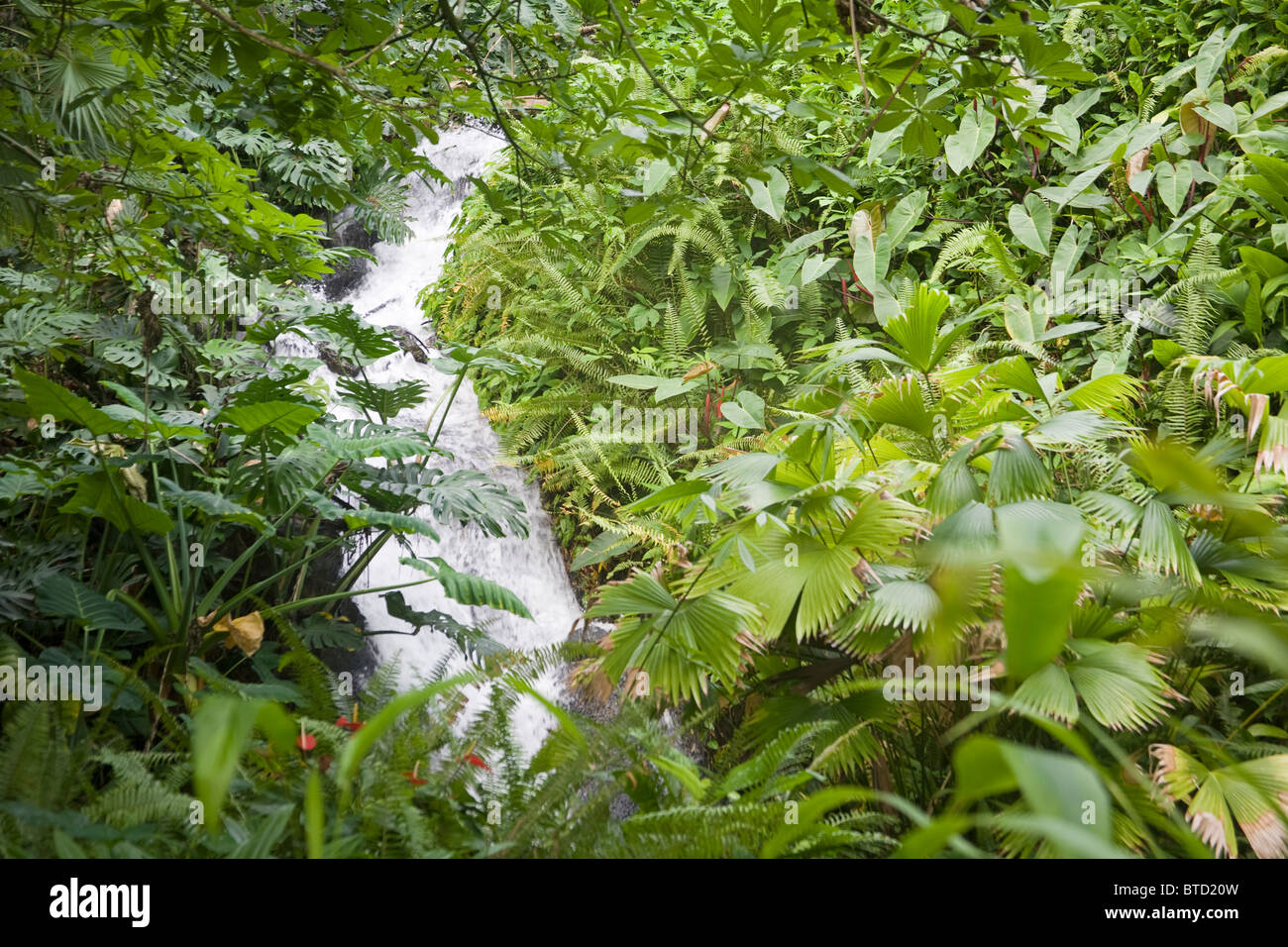 Waterfall Eden Project The worlds largest Greenhouse United Kingdom Stock Photo