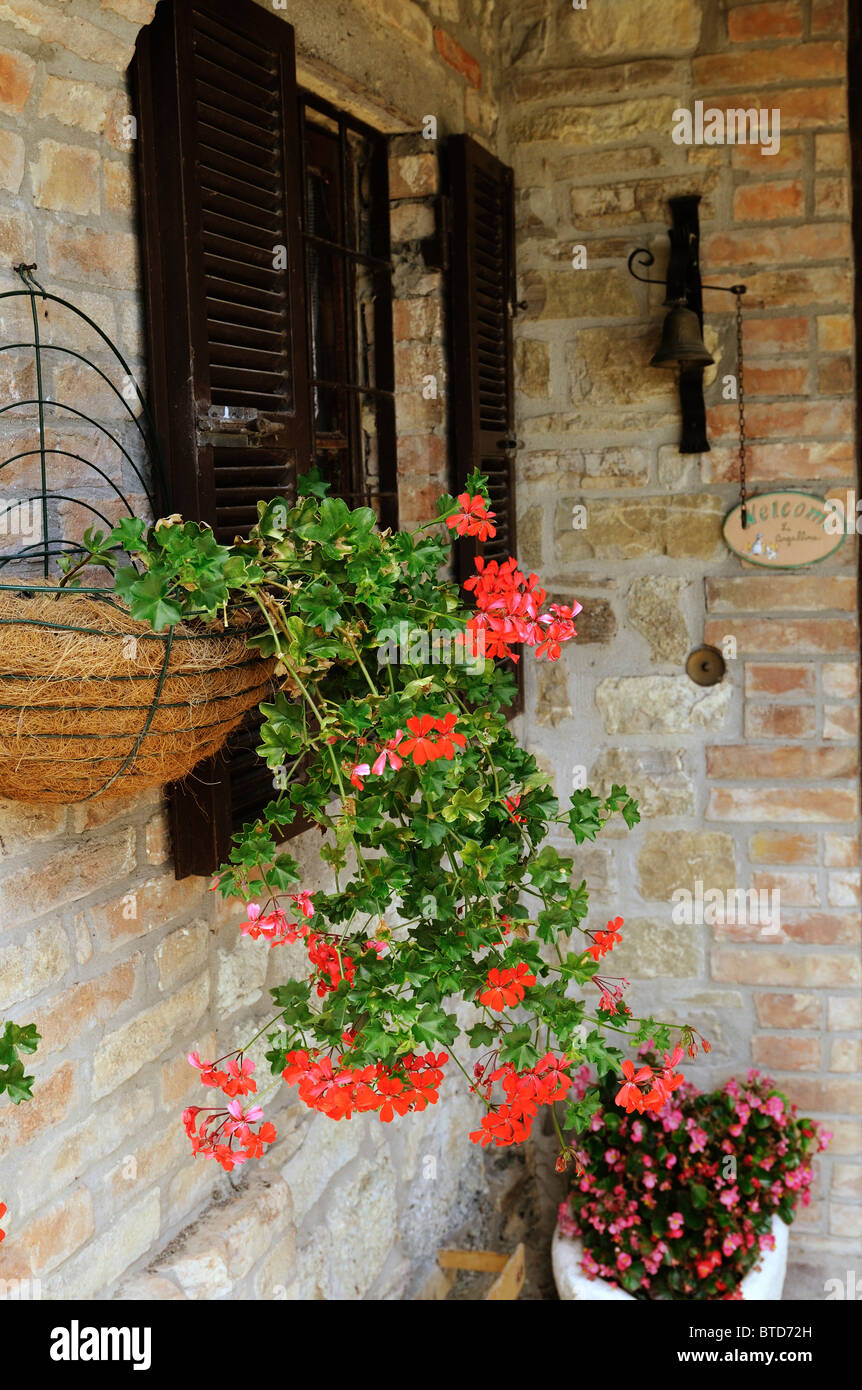 A window box in an Italian country farm house - Stock Image