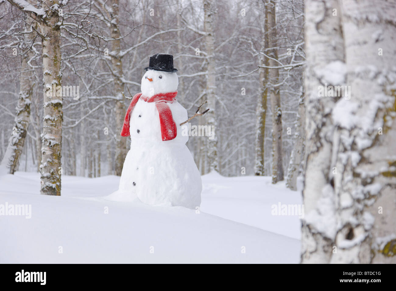 Snowman standing in a snow covered birch forest, Anchorage, Alaska, Winter - Stock Image