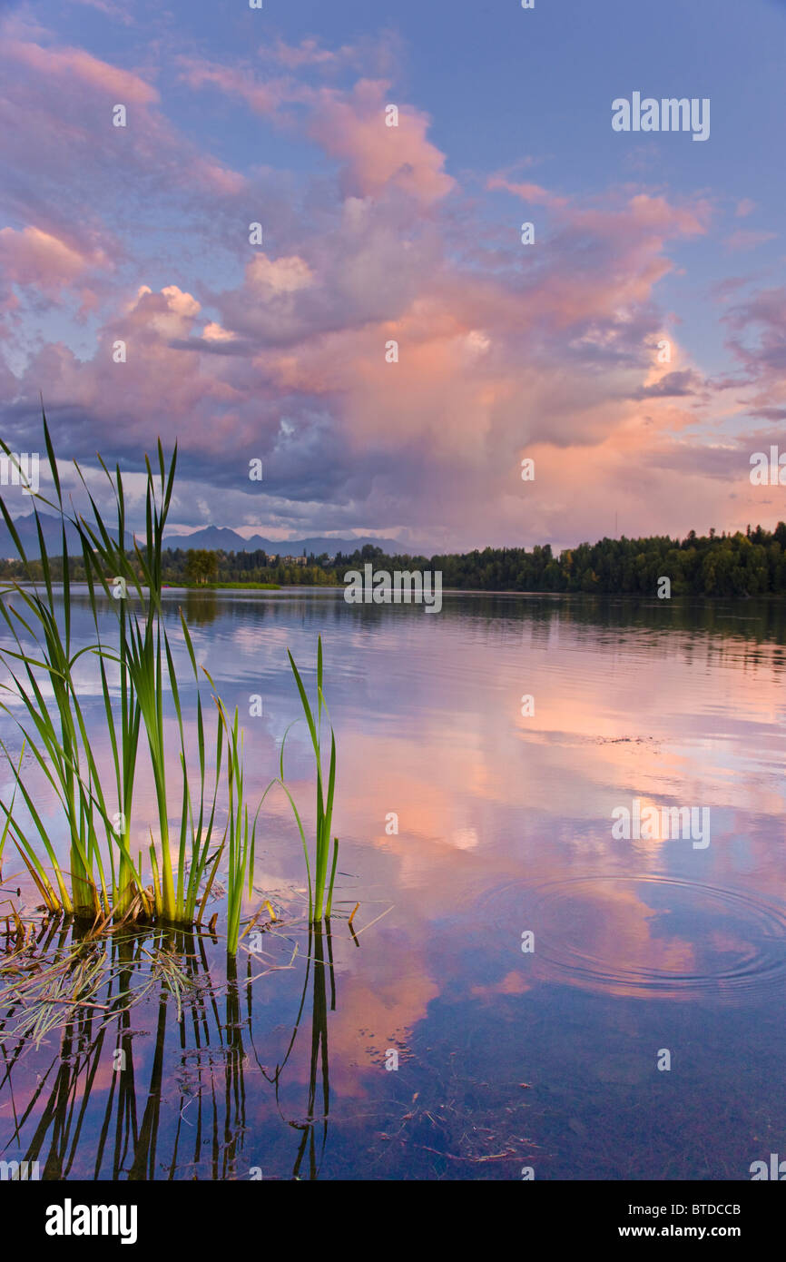 View of sunset clouds reflected in  Westchester Lagoon near downtown Anchorage, Southcentral Alaska, Summer - Stock Image