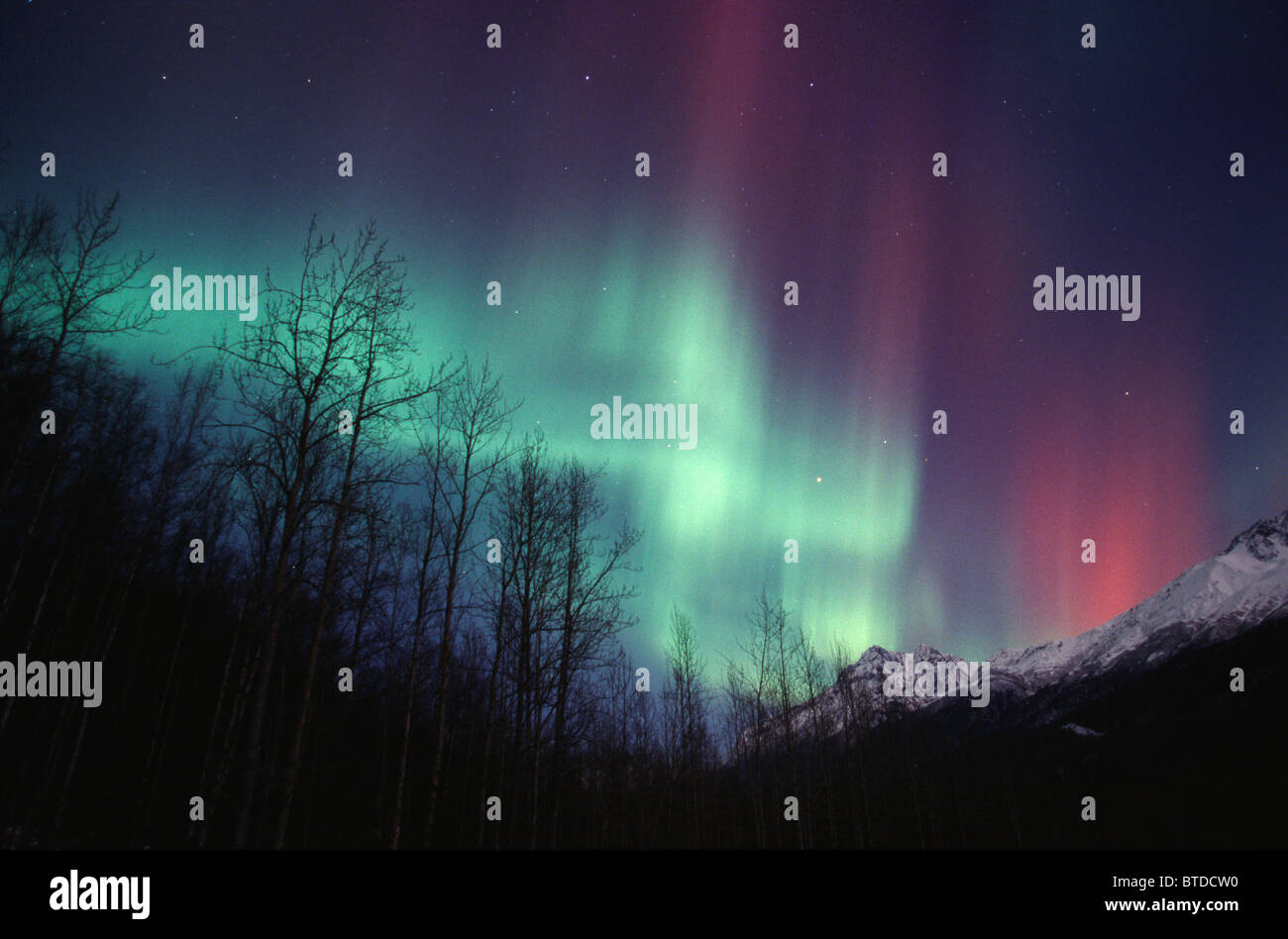 Multi colored Northern Lights (Aurora borealis) fill the night sky off the Old Glen Highway near Palmer, Alaska, Stock Photo