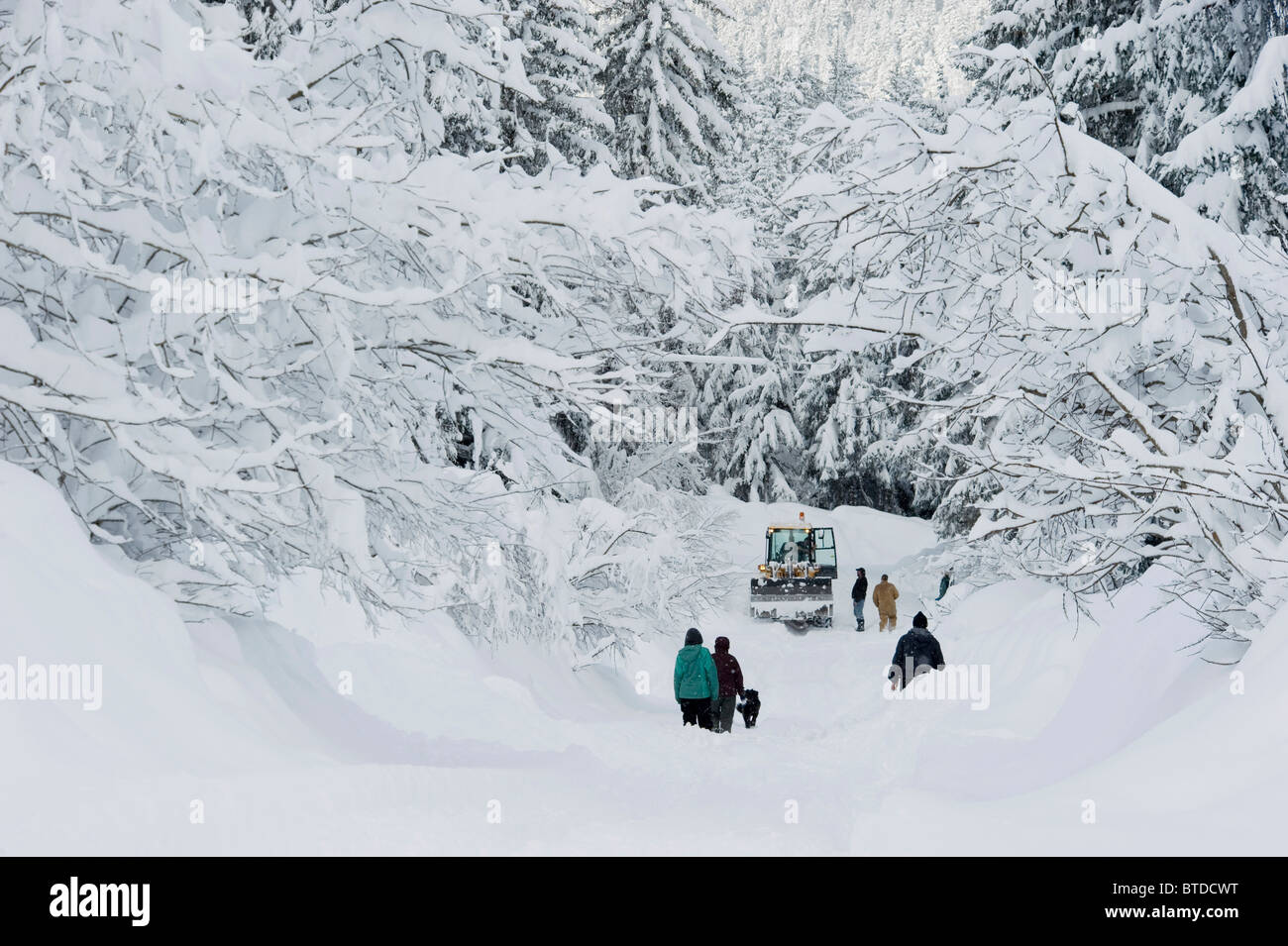 Stranded Girdwood residents look for help from a snowplow driver after a deep snowstorm, Southcentral Alaska, Winter Stock Photo