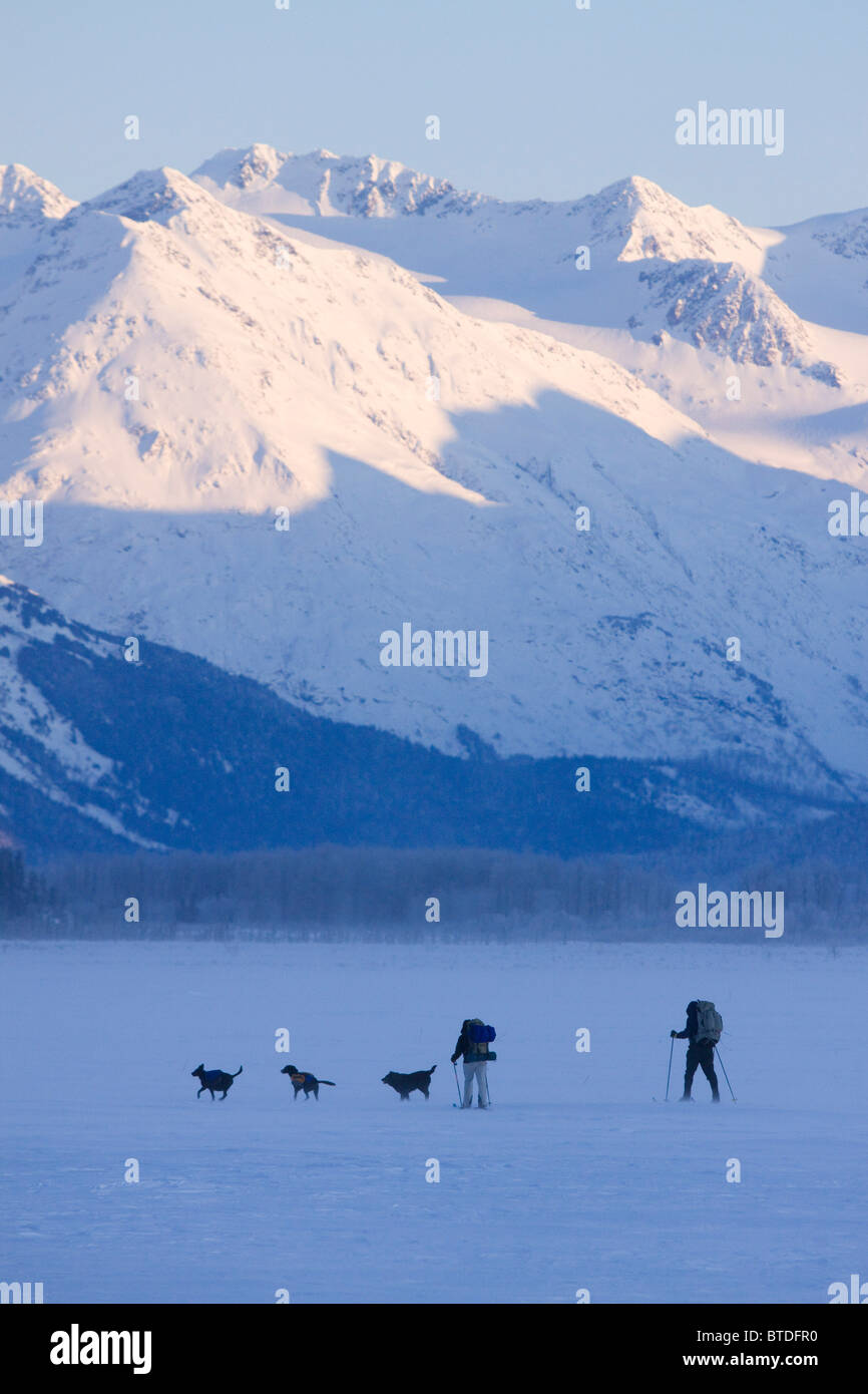 Two cross-country skiers with dogs ski across a lake along Seward Highway with snowcovered mountains in the background, - Stock Image