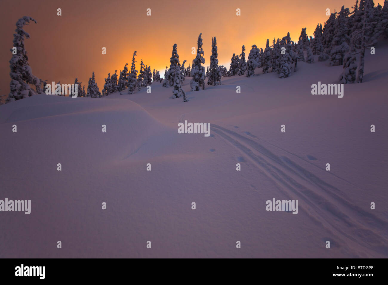 Ski tracks sunset during winter on Wrangell Island in the Tongass National Forest, Alaska - Stock Image