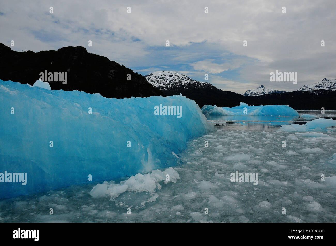 A Large iceberg drifts away from Chenega Glacier on an overcast day, Prince William Sound, Kenai Peninsula, Alaska, - Stock Image
