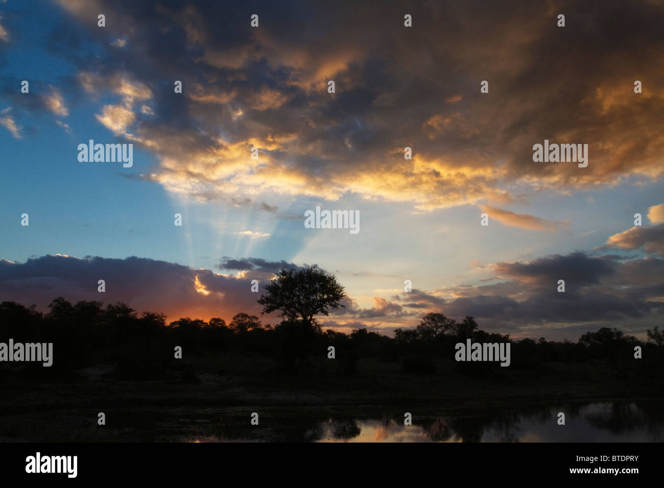 Moody bushveld sunset showing rays of sun illuminating a cloud reflected in water in the foreground - Stock Image