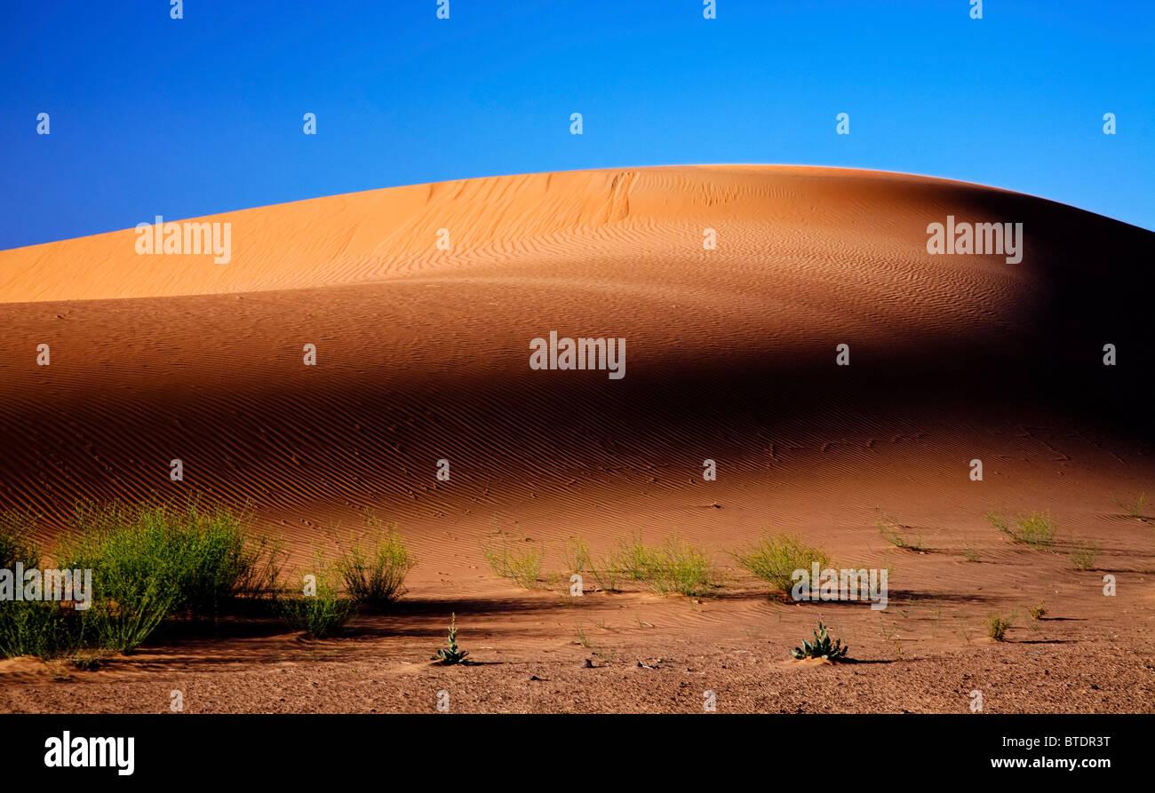 Rising sun over a sand dune in the Sahara desert in Morocco - Stock Image