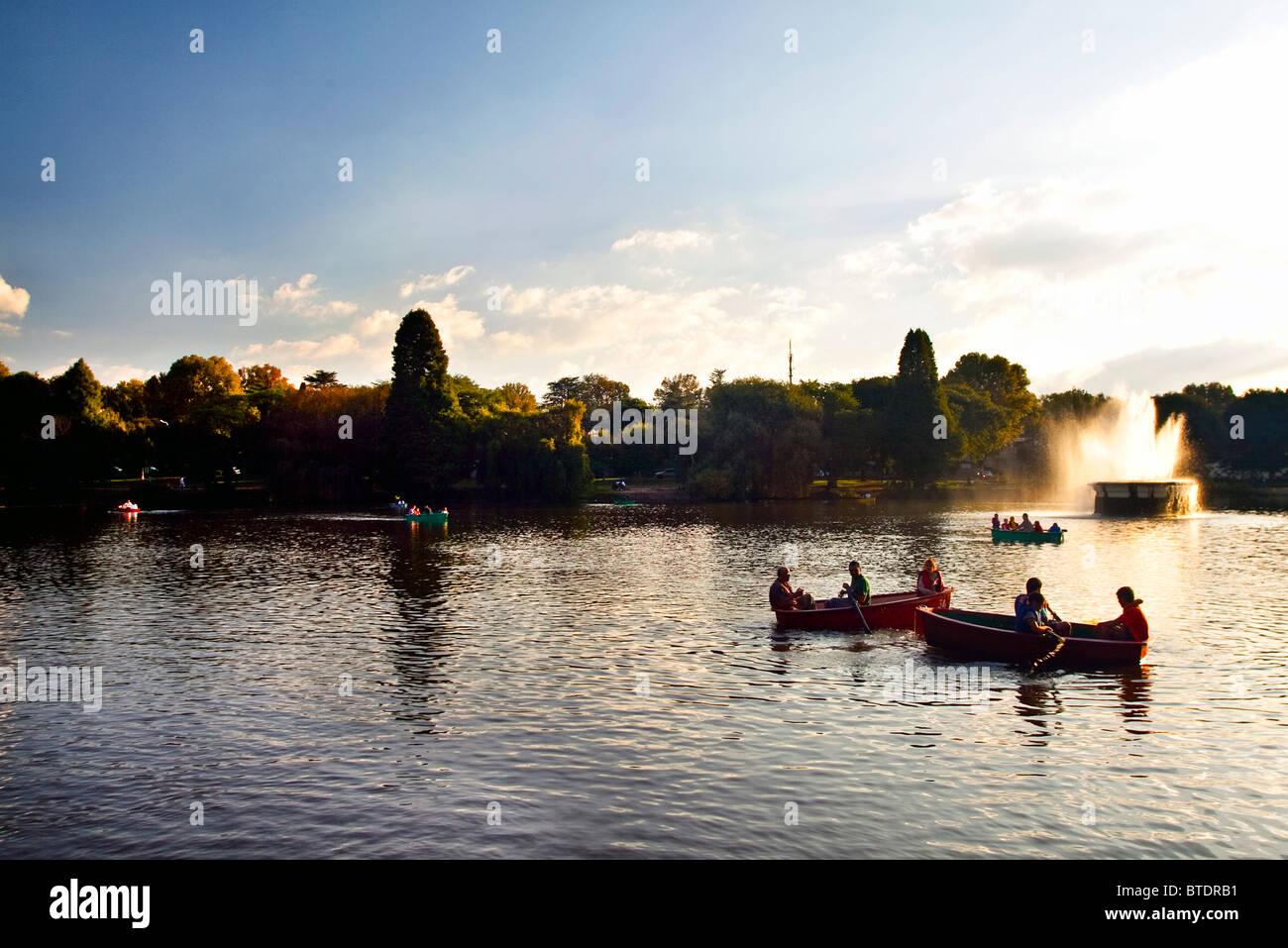 Rowing boats on Zoo lake at dusk - Stock Image