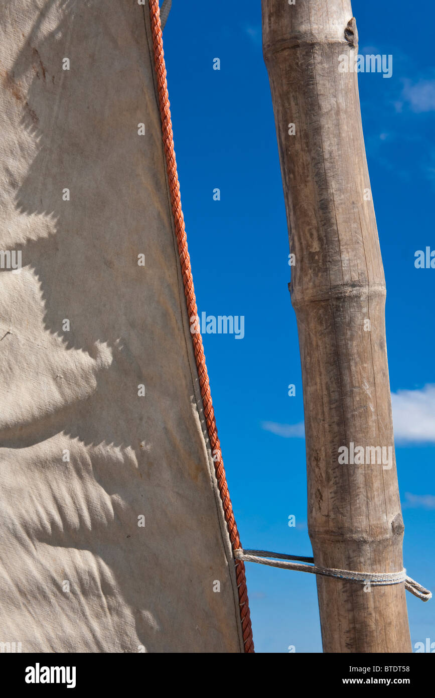 Detail of a Bamboo mast of a dhow or traditional sailing boat - Stock Image