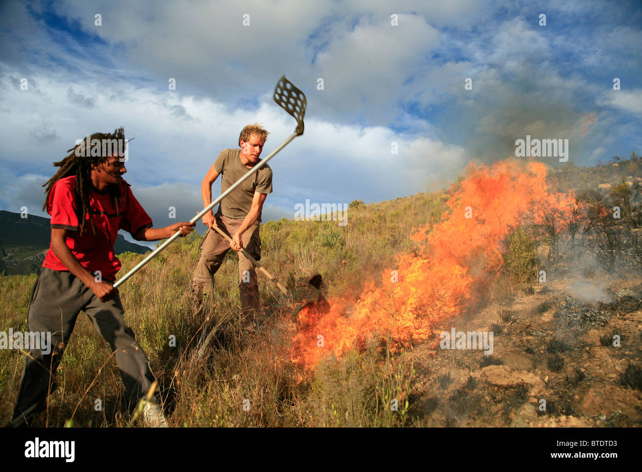 Fire fighters beating out a mountain fire near Greyton - Stock Image