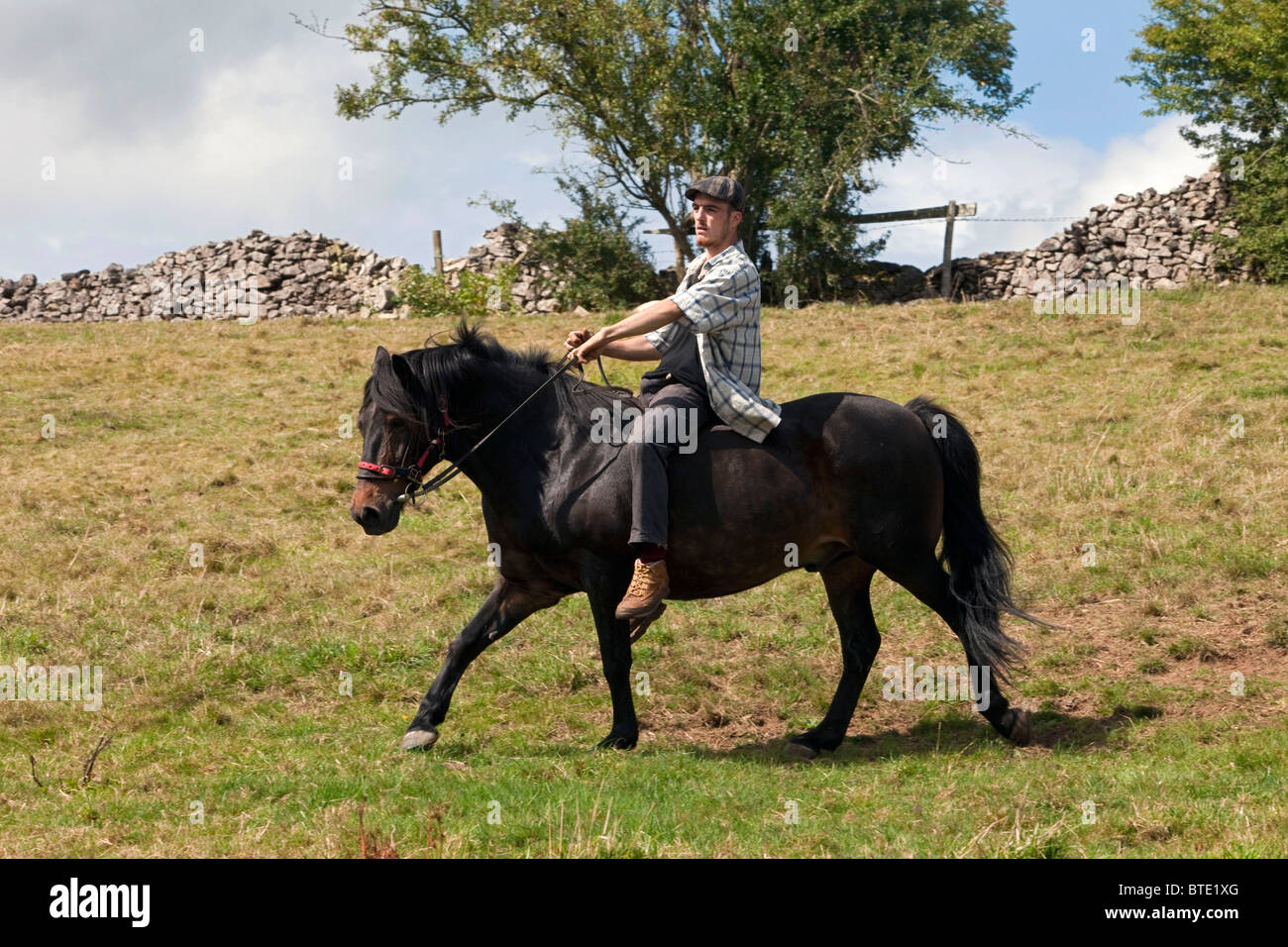 A young gypsy man proudly rides bare back on his brown cob horse at the gypsy gathering of Priddy Sheep Fair. DAVID - Stock Image