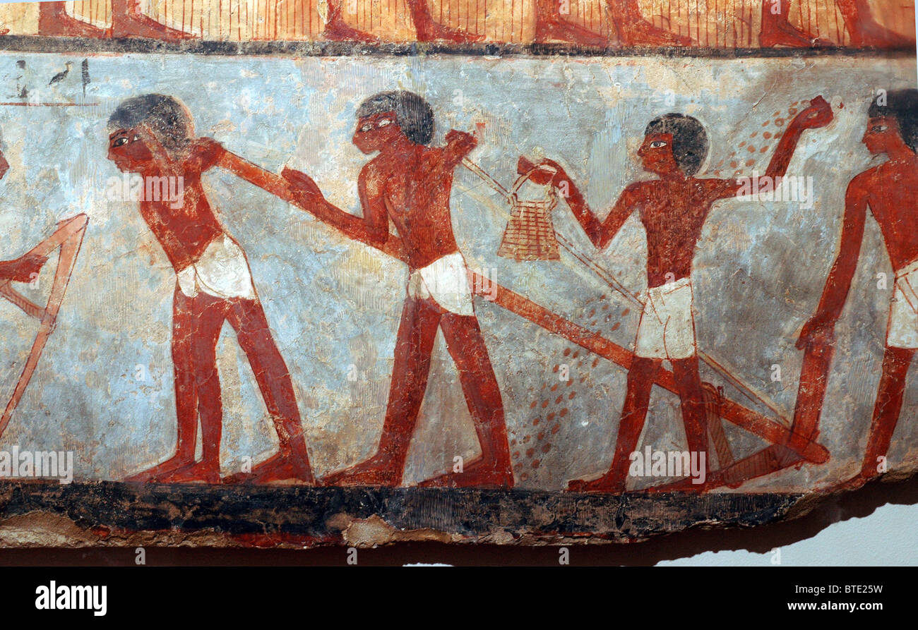 5352. Fresco depicting egyptian farmers plowing and sowing. Thebes (Egypt) c. 1450 BC - Stock Image