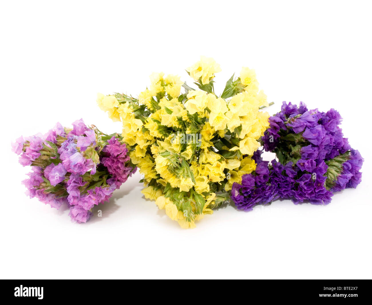 Bouquet of beautiful statice flowers on white background. - Stock Image