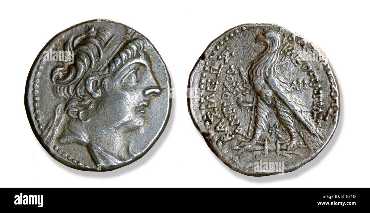 5403. The Selucid King Antiochus IX Cyzicenus, 115-95 BC - Stock Image