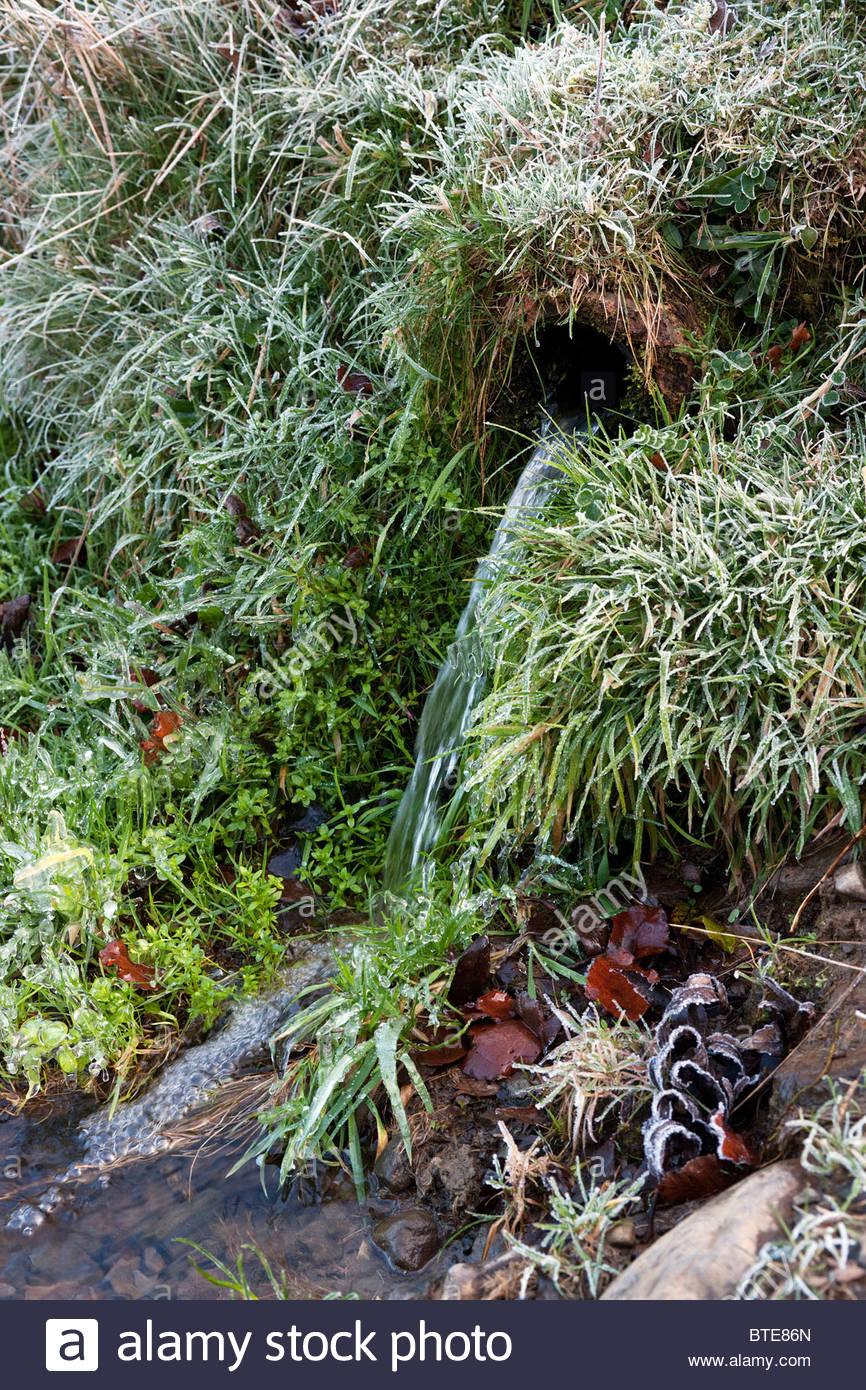 Water pouring from field drain pipe with frosty grass - Stock Image