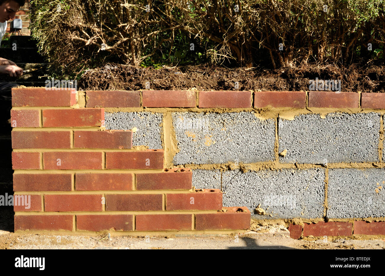 New Garden Wall With Inner Concrete Blocks And Outer Red Bricks. UK.