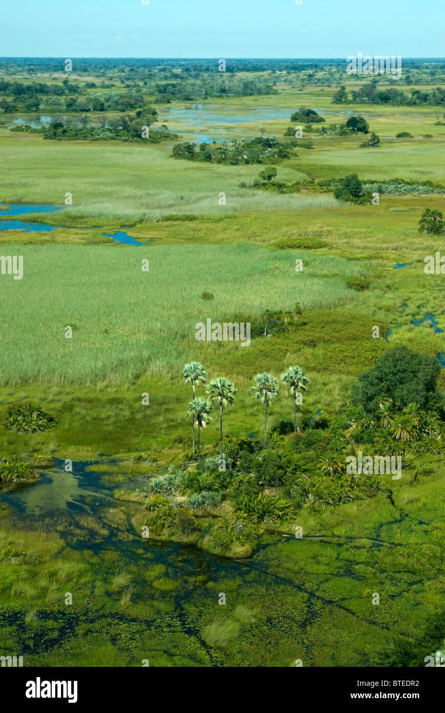 Aerial scenic view of the Okavango delta - Stock Image