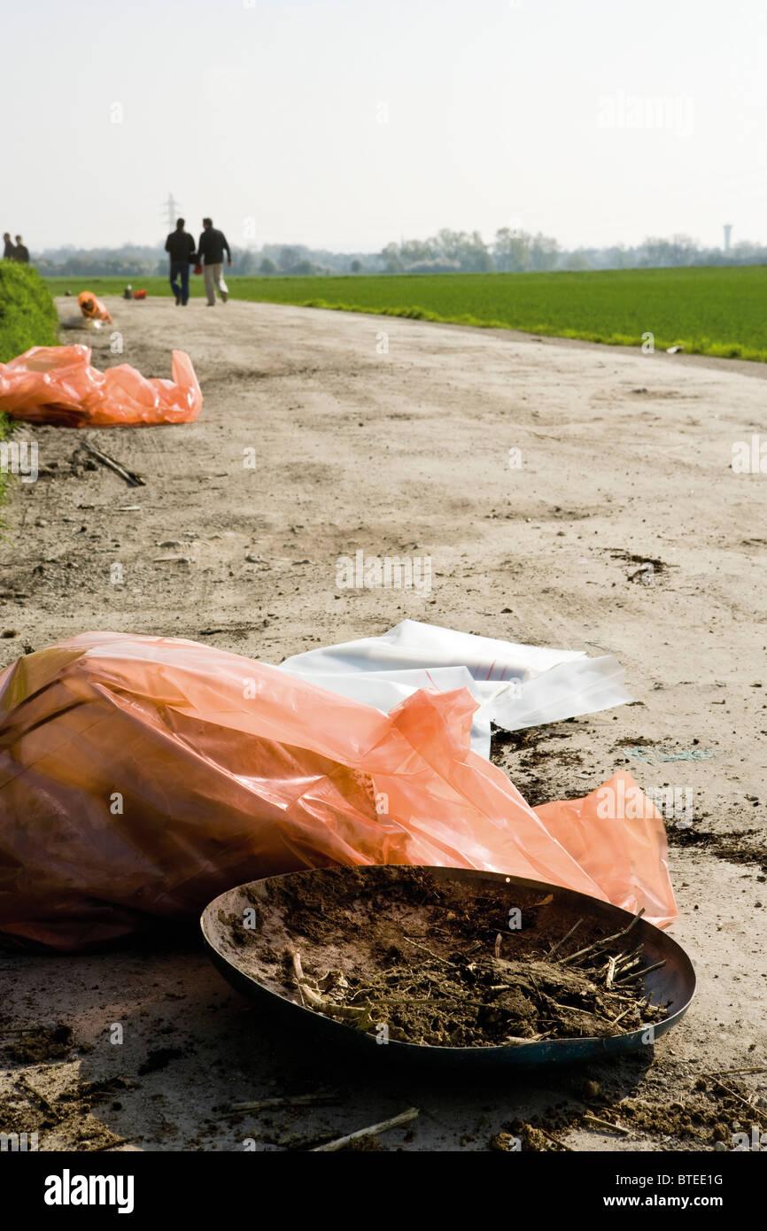 Roadside litter - Stock Image