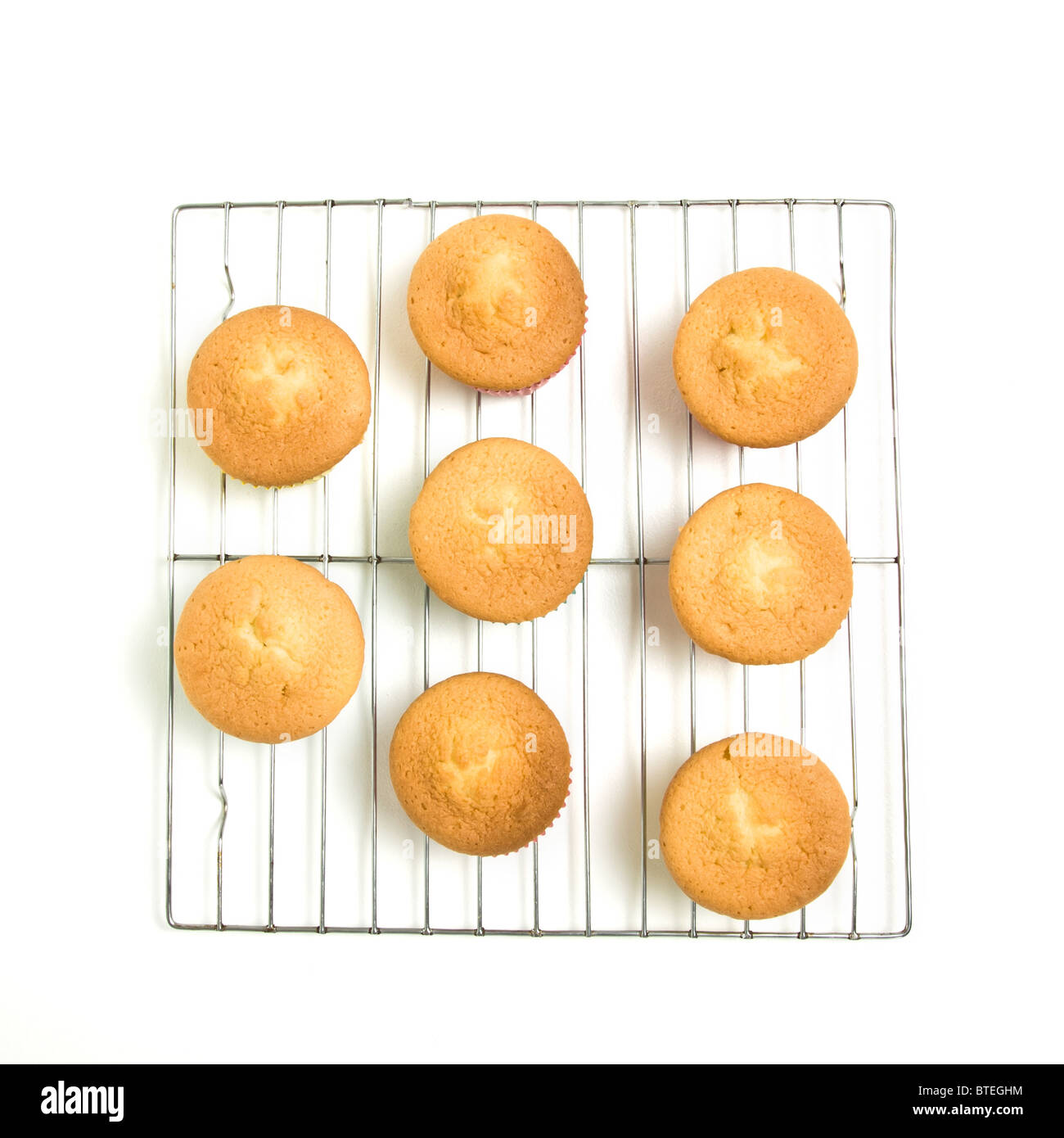 Home baked cupcakes cooling on wire mesh rack from low perspective isolated on white. - Stock Image
