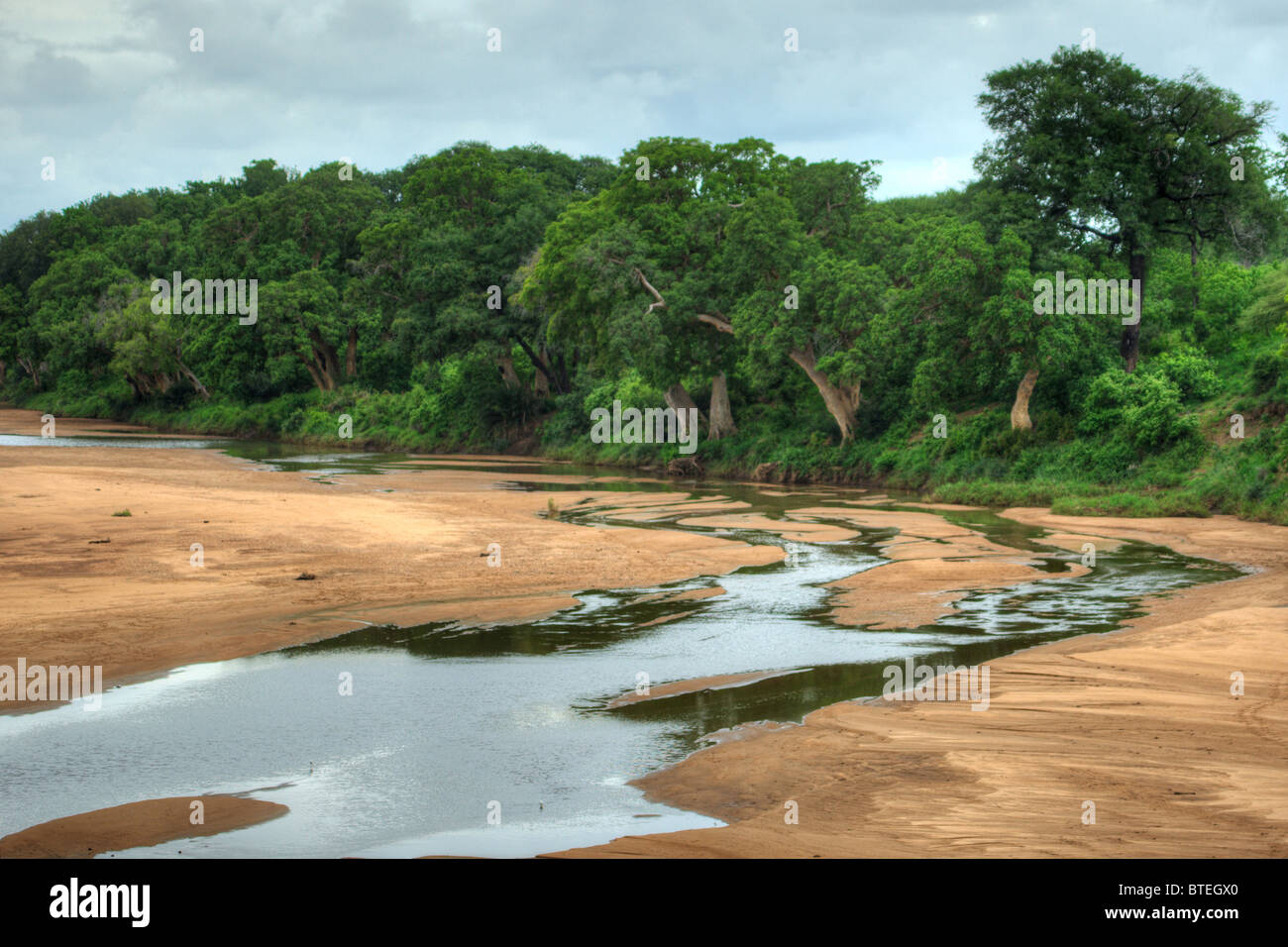 Shingwedzi river bed and some water flowing with thick vegetation on the riverbanks Stock Photo