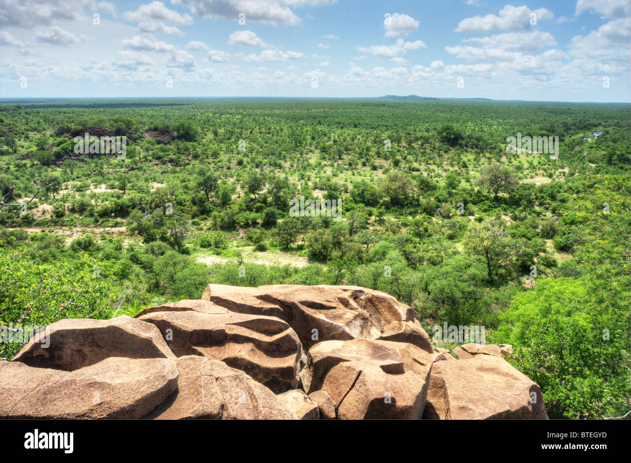 View from the Bateleur viewpoint over the lowveld in the Kruger National Park - Stock Image