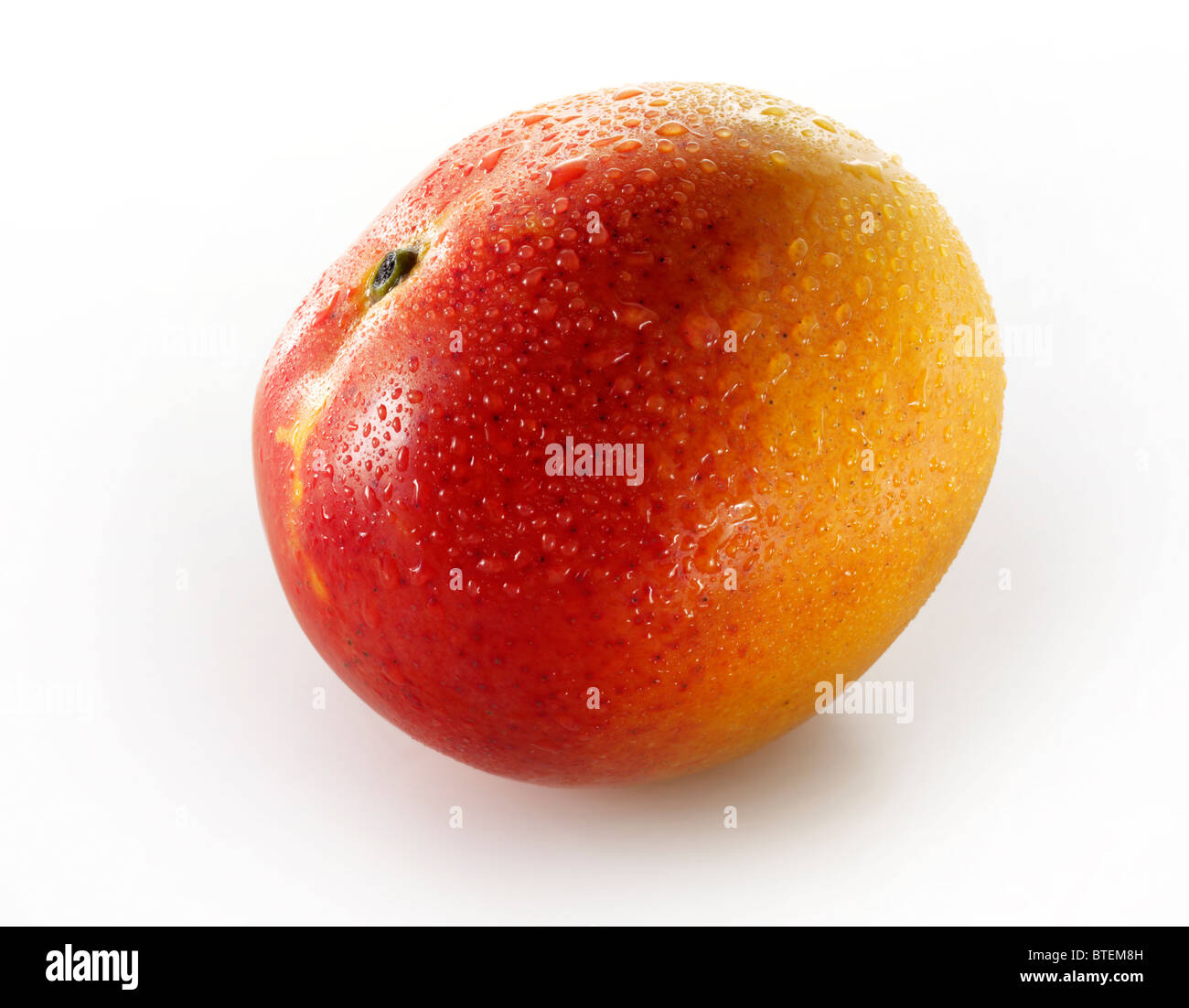 Fresh whole Mango against a white background for cut out - Stock Image