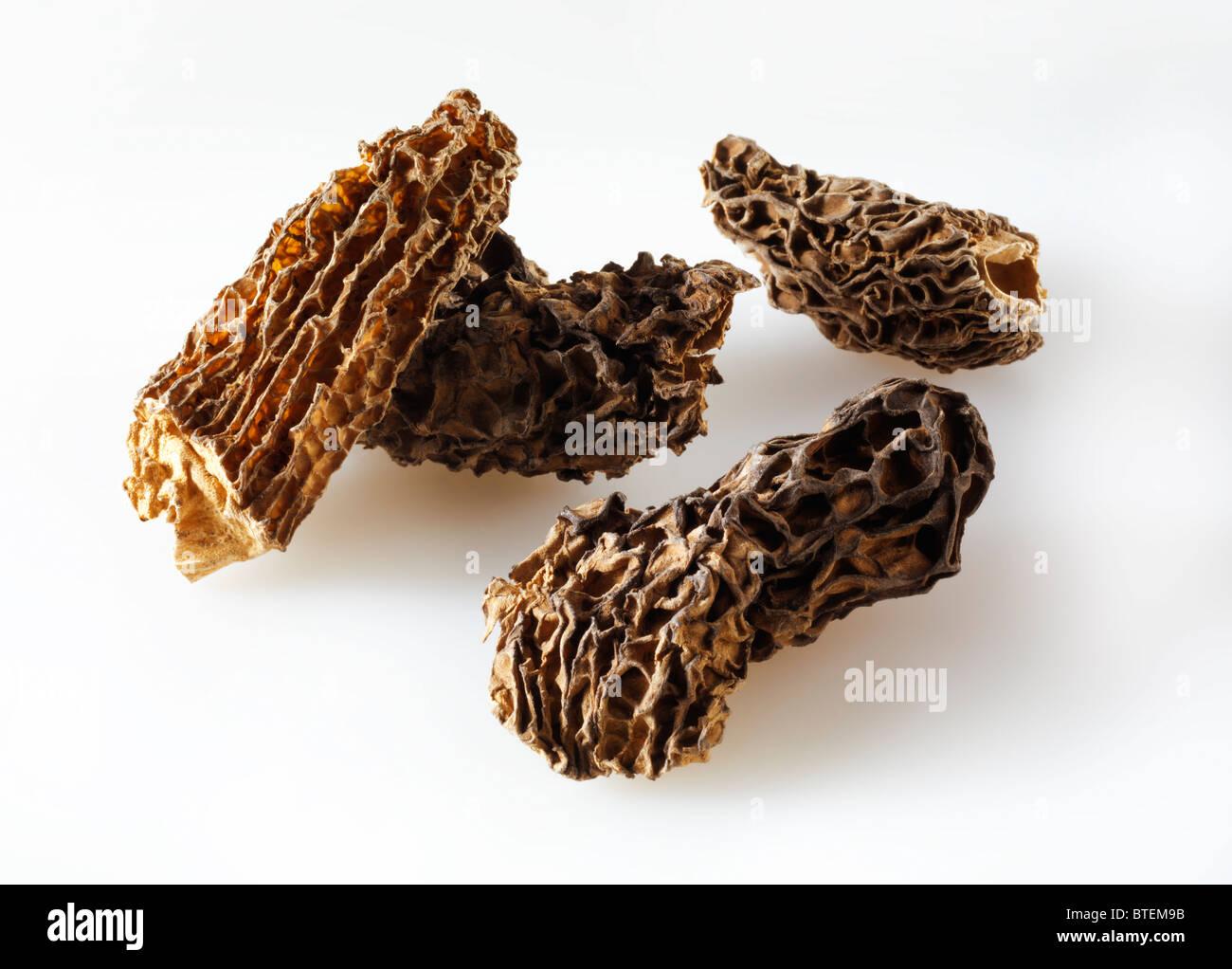 Dried Jumbo Morel mushrooms - Stock Image
