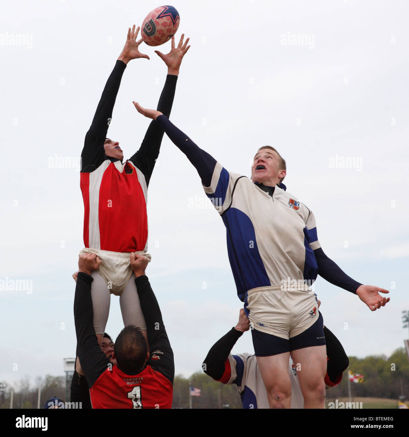 A Cornell University player (l) and University of Virginia player (r) vie for the ball during a rugby match. - Stock Image