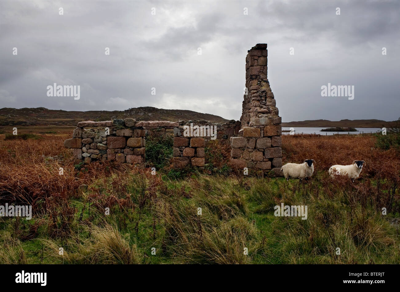 Highland Skottland dating hekte nå