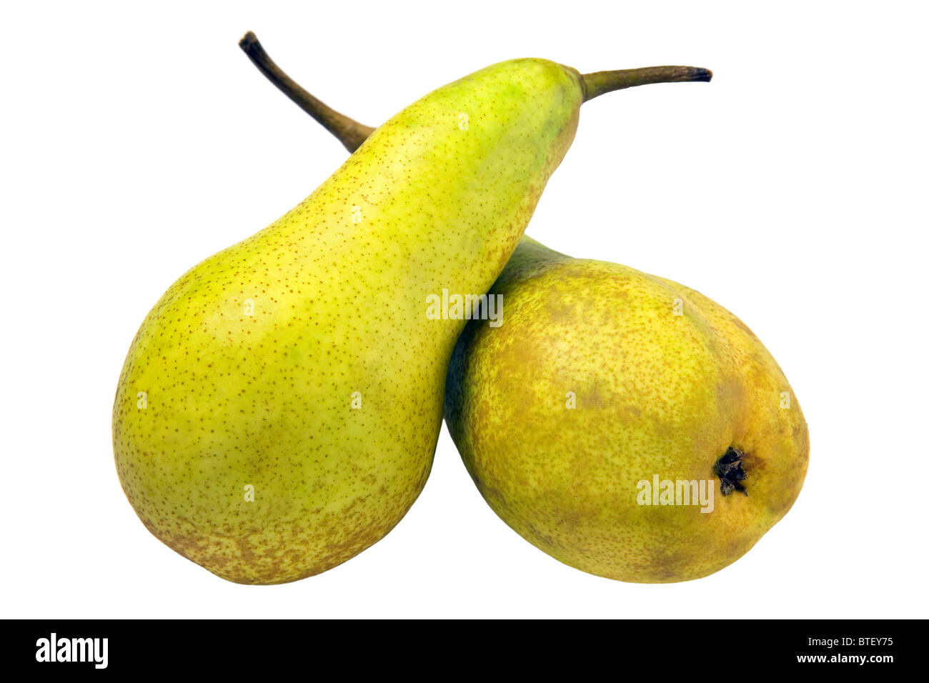 Two Pears - Stock Image