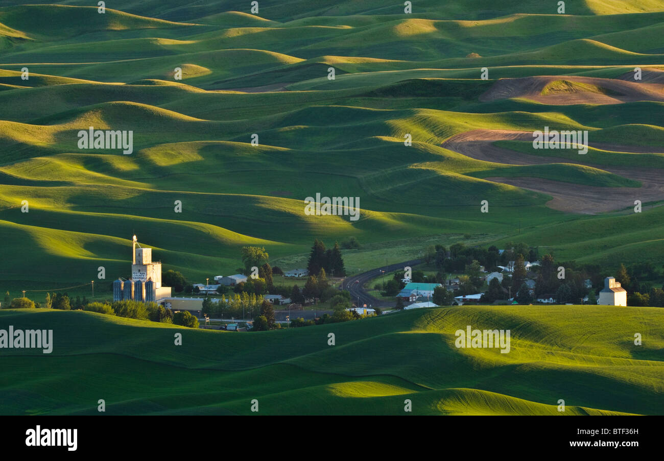 Palouse country wheat fields and the town of Steptoe from Steptoe Butte, Washington. - Stock Image