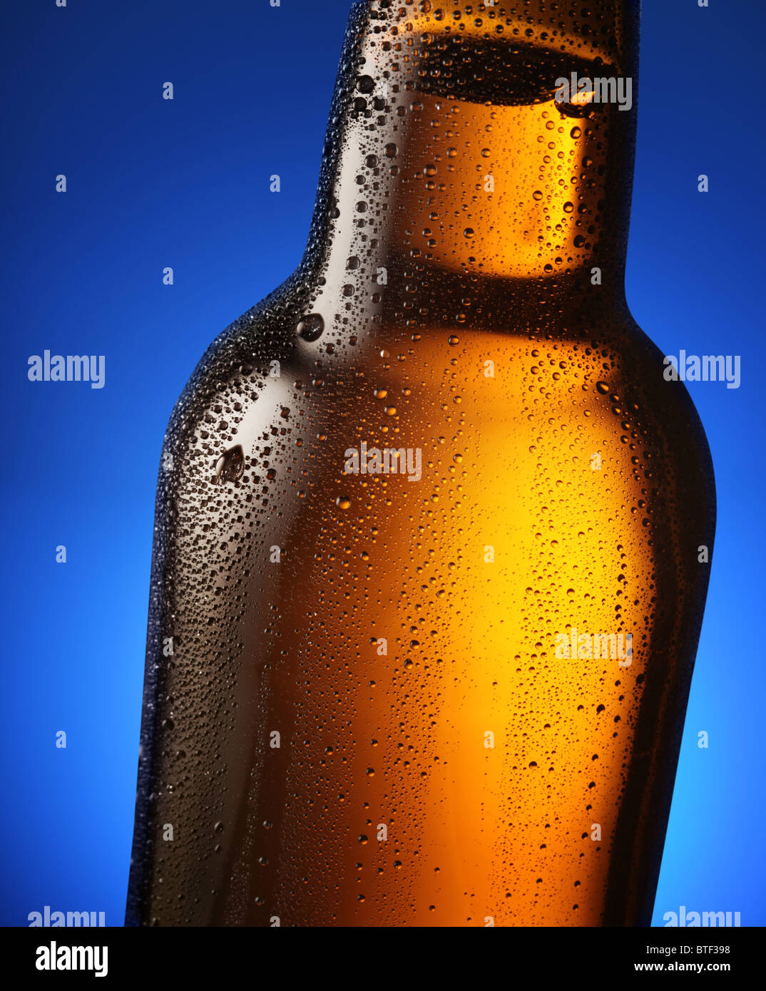 Bottle of beer with drops on a blue background. Close up part of the bottle. Stock Photo