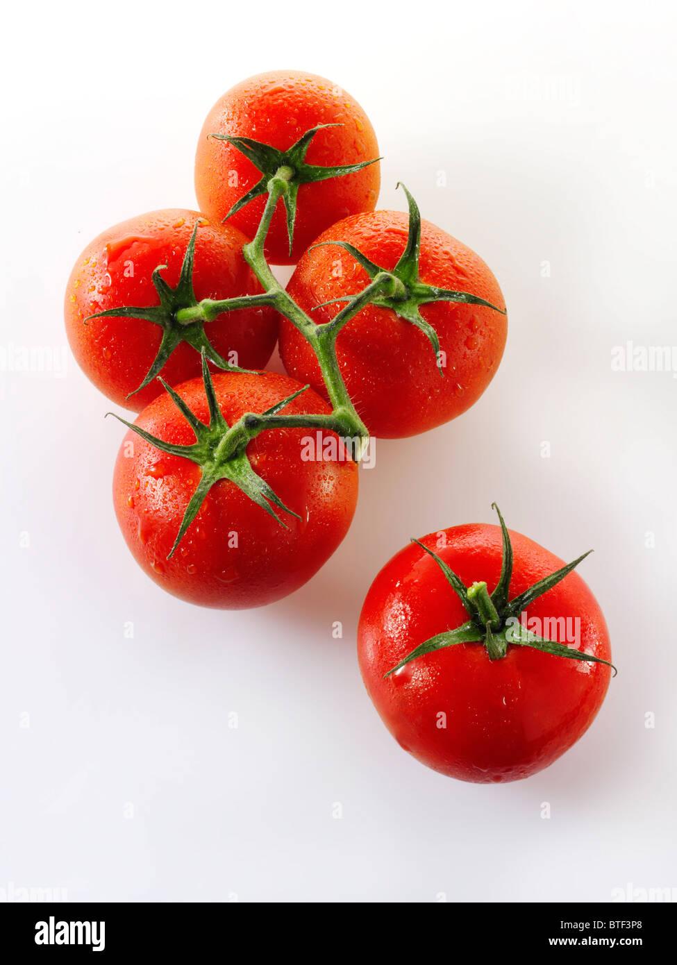 Jubilee vine tomatoes - Stock Image