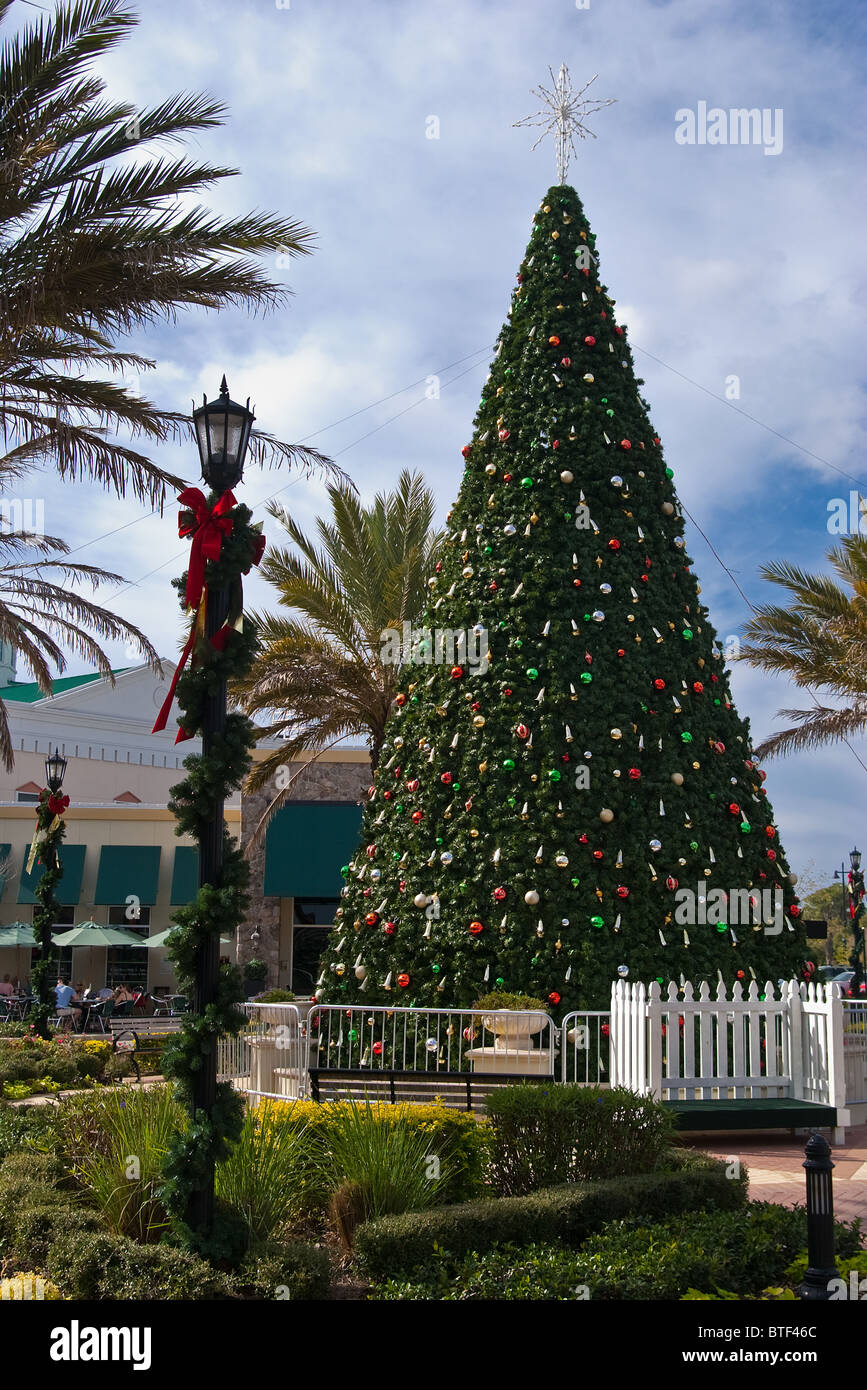 Festive Christmas Tree in center square of Lakewood Ranch, Florida - Stock Image