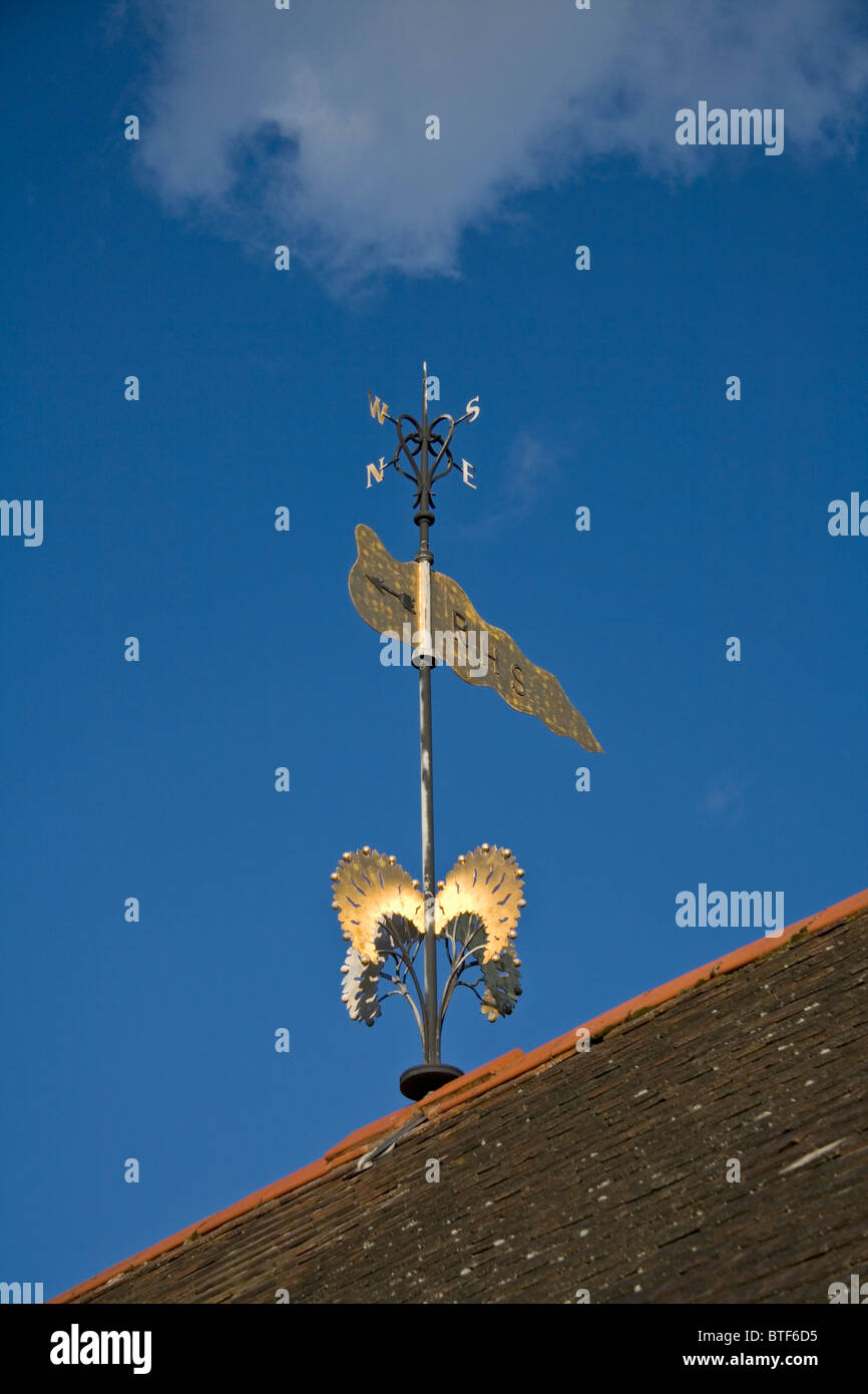 Weather vane at Royal Horticultural Society (RAHS) gardens Wisley against a blue sky - Stock Image