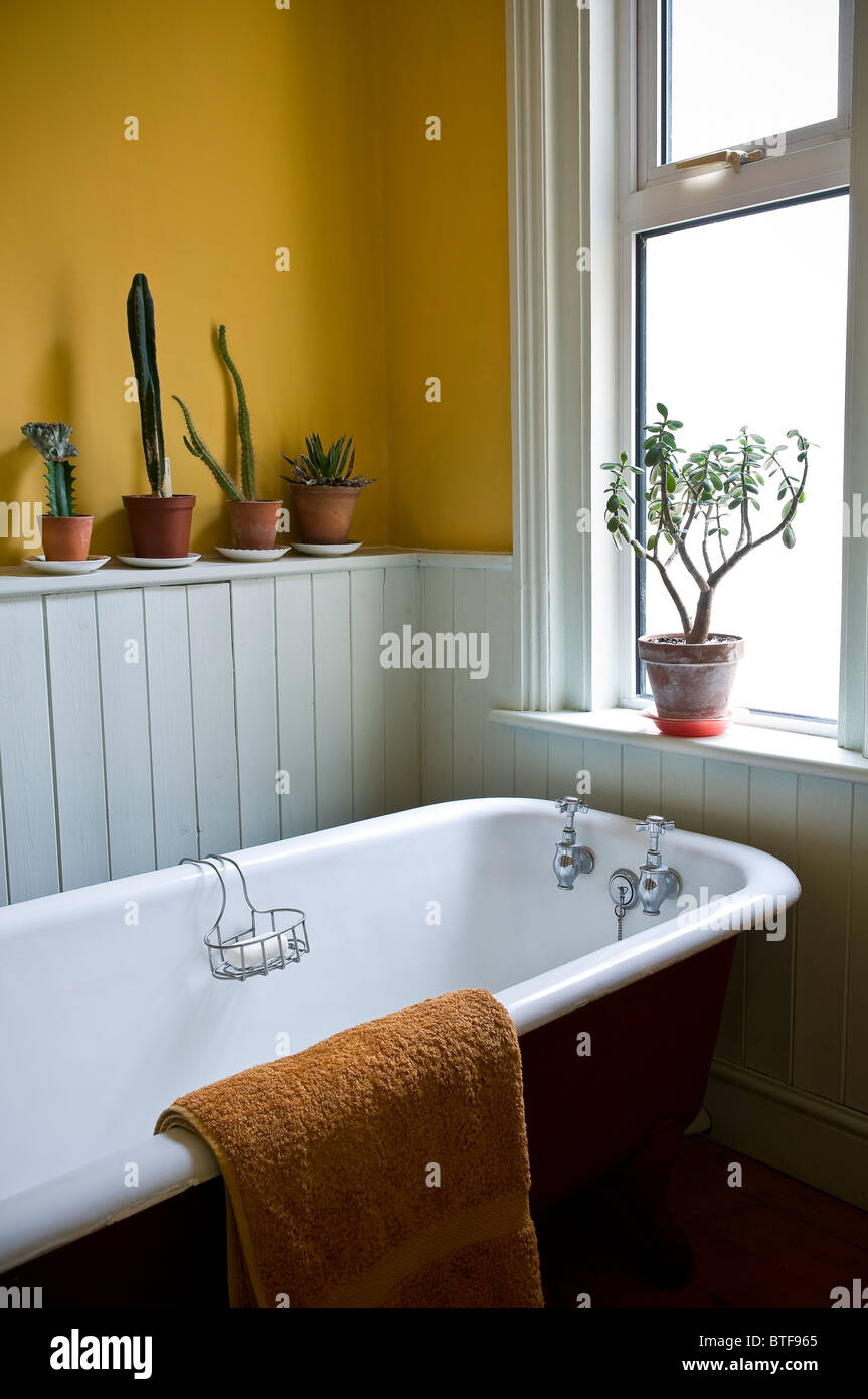 Roll Top Bath In Bathroom Of An Edwardian Terraced House