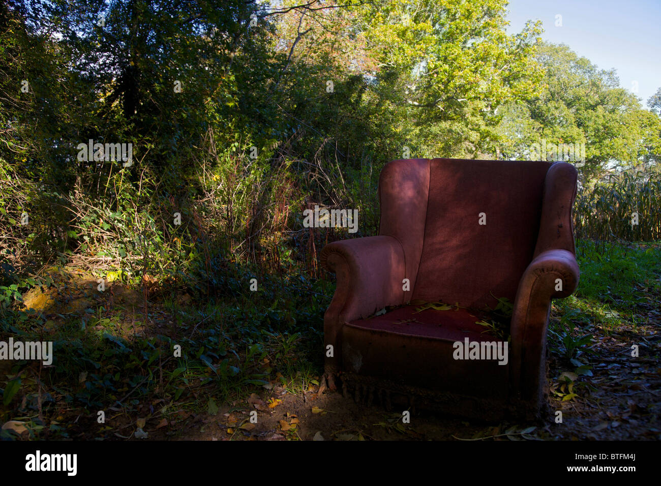 An abandoned armchair on the edge of a field - Stock Image