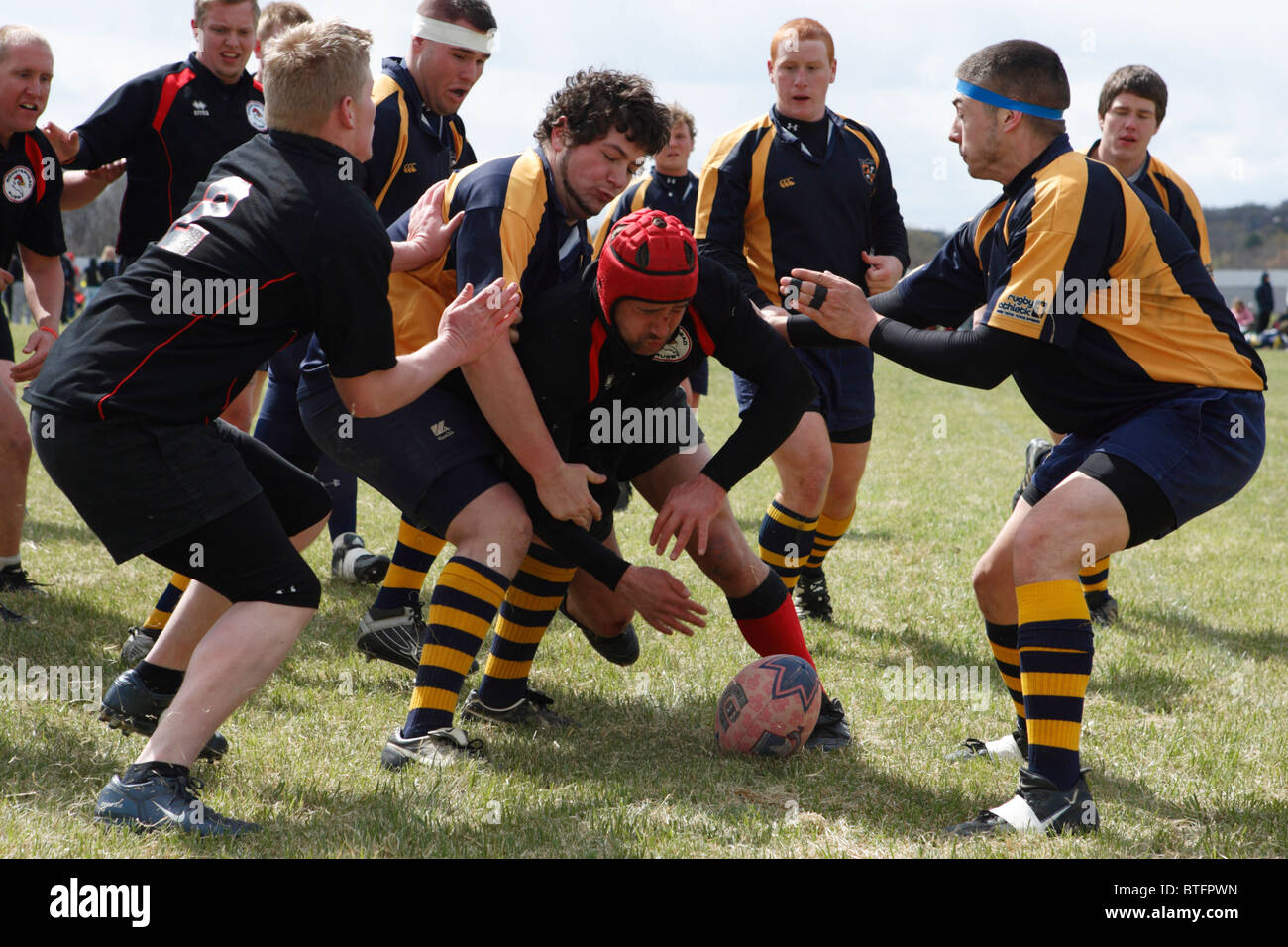 California University of Pennsylvania and West Virginia University players fight for the ball during a rugby match. - Stock Image