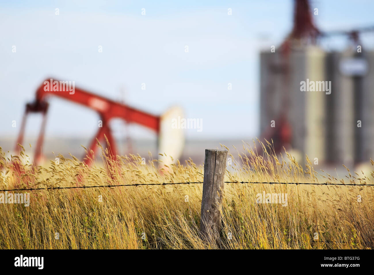 Barbed wire fence, wheat field, oil pump jack and inland grain terminal in background.  Gull Lake, Saskatchewan, - Stock Image