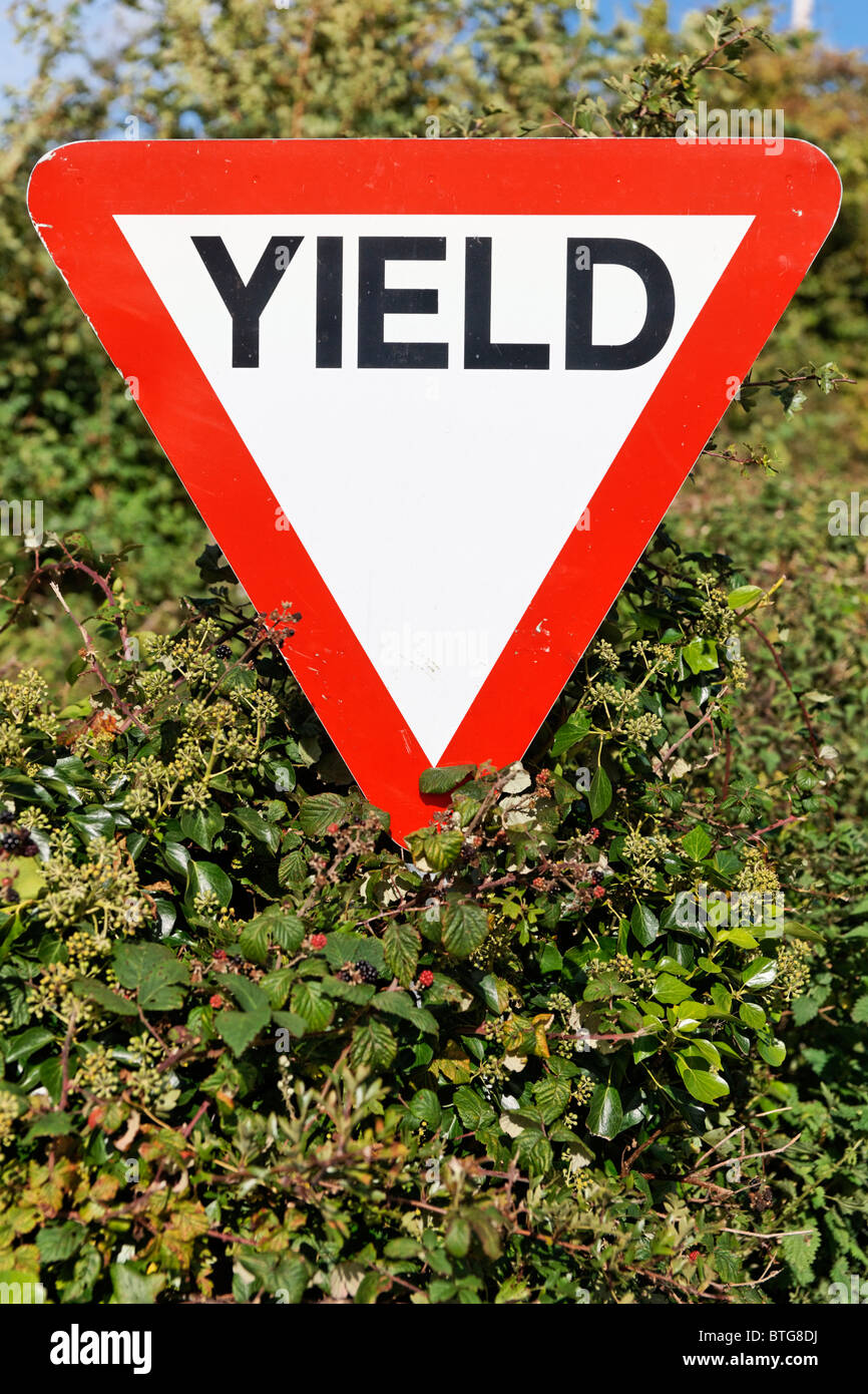 Yield road sign in Ireland. - Stock Image