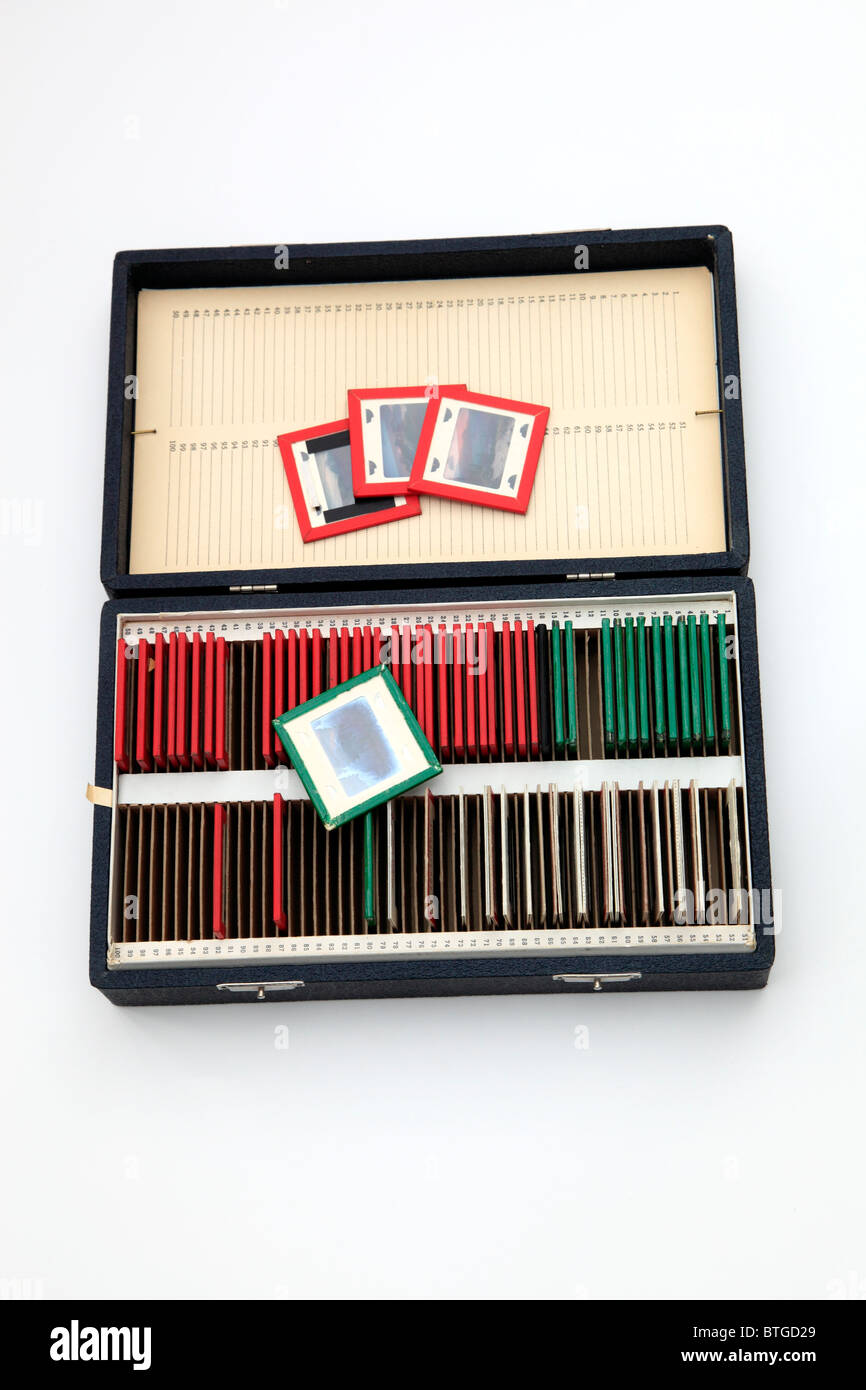 A vintage ( 1950's) slide file case with glass covered slides. - Stock Image