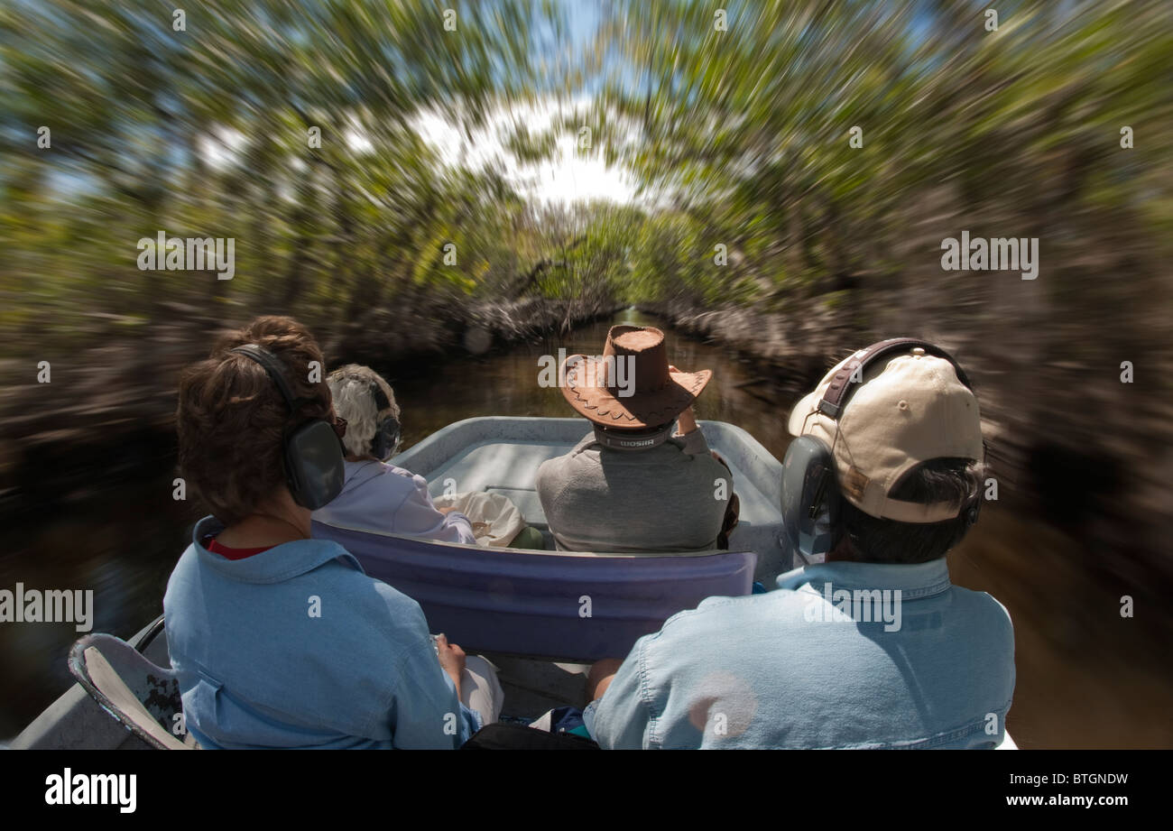 Tourists on an air boat through the mangrove swamps in the Everglades, Florida Stock Photo