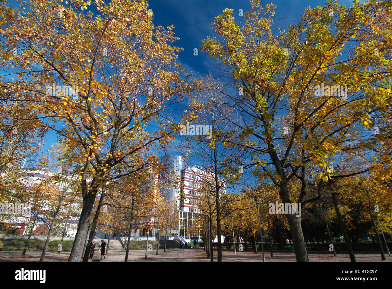 Park with trees near Bercy in downtown of Paris, capital of France - Stock Image