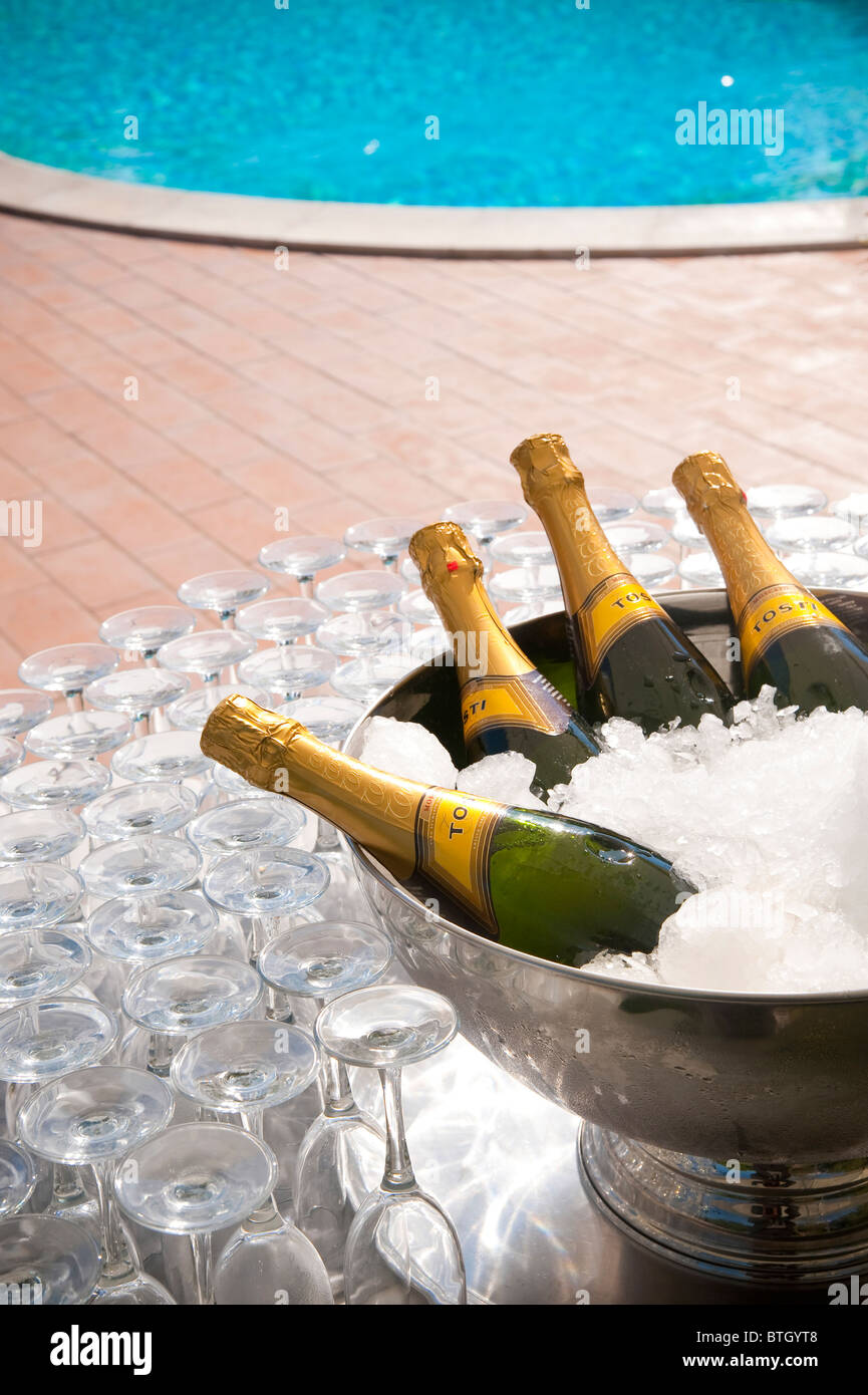 Prosecco wine on ice Stock Photo