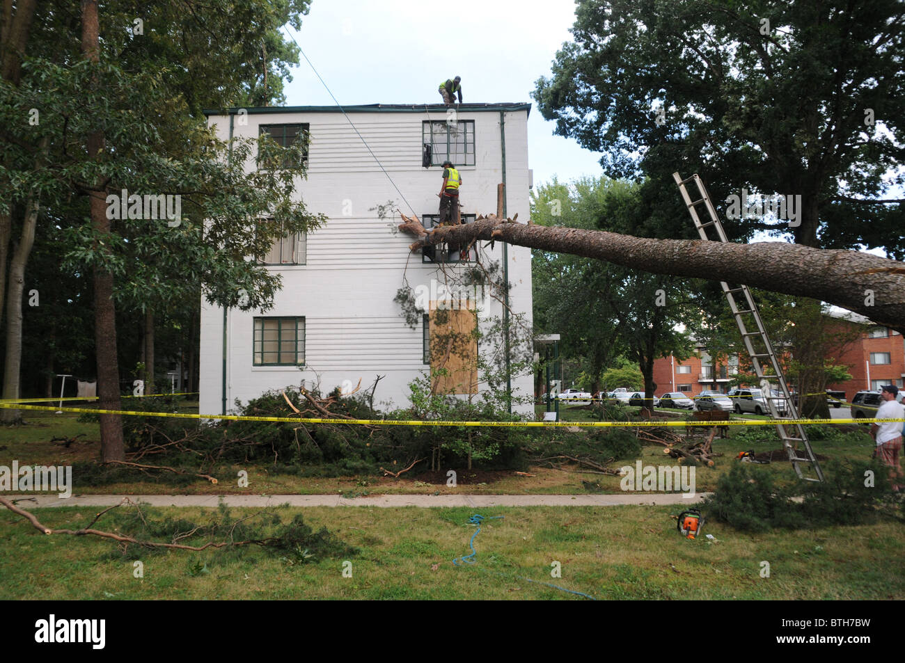 Tree crashed into an apartment building in Greenbelt, Maryland - Stock Image