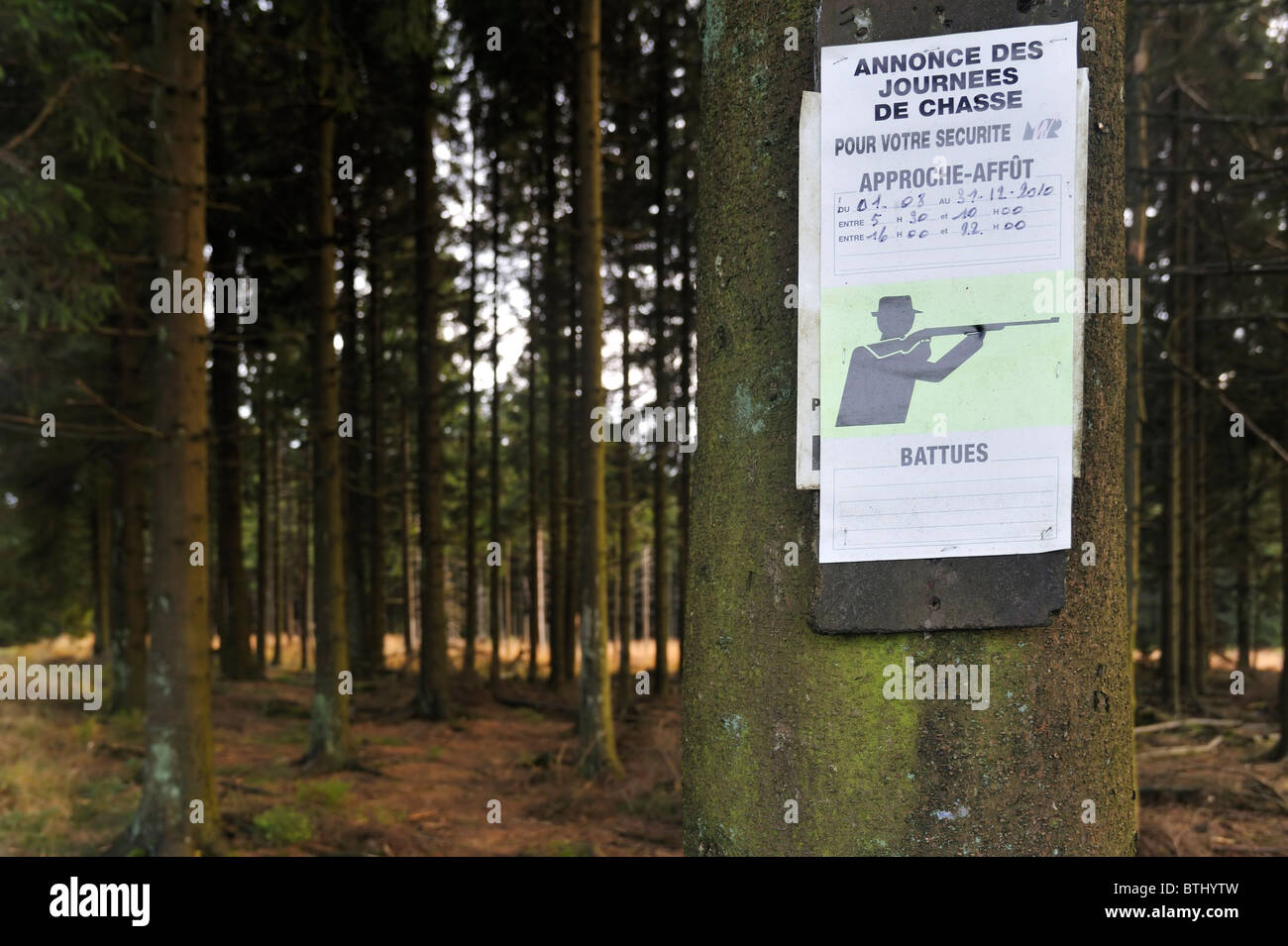 Announcement of hunting season in forest, Ardennes, Belgium - Stock Image