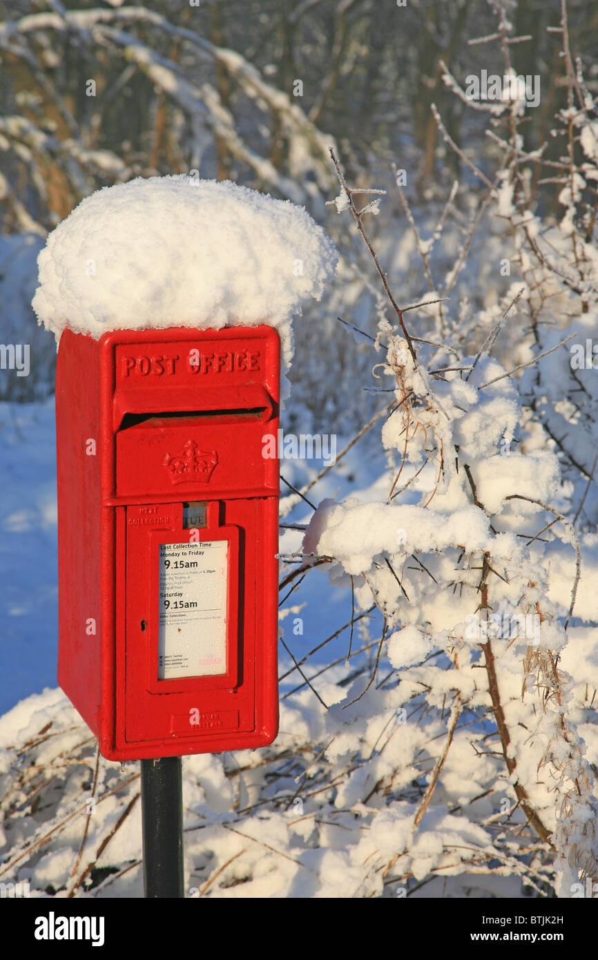 Bushes and old red post box covered in snow - Stock Image
