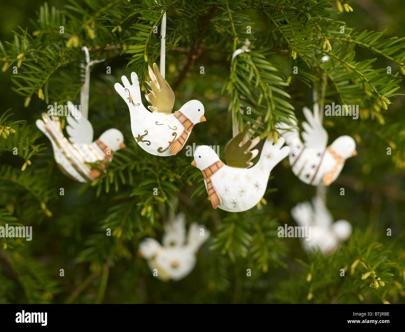 novelty bird christmas tree decorations stock image