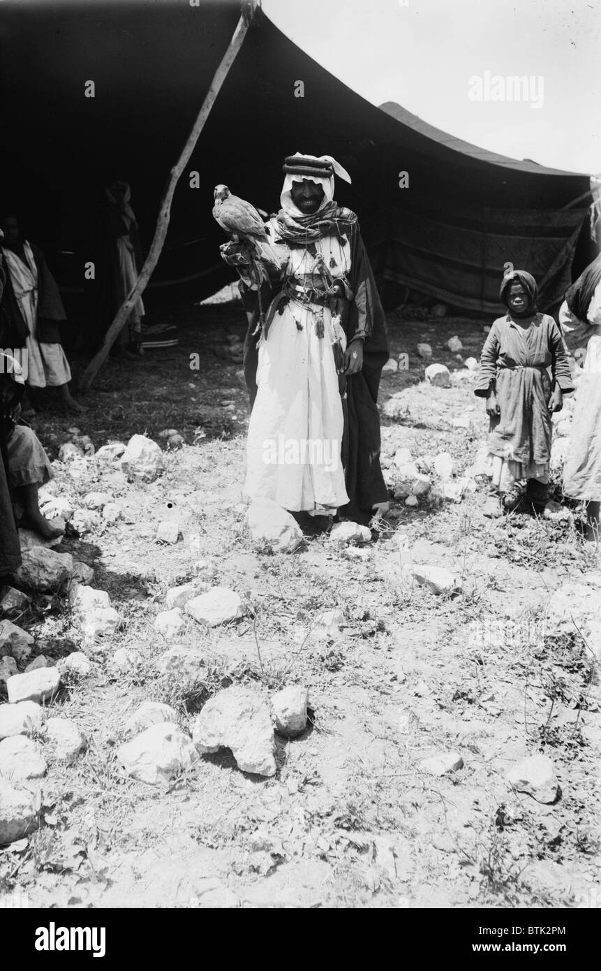 Bedouin hunter with his falcon, Jerusalem, photograph by American Colony Photo Department, circa 1898-1946 - Stock Image