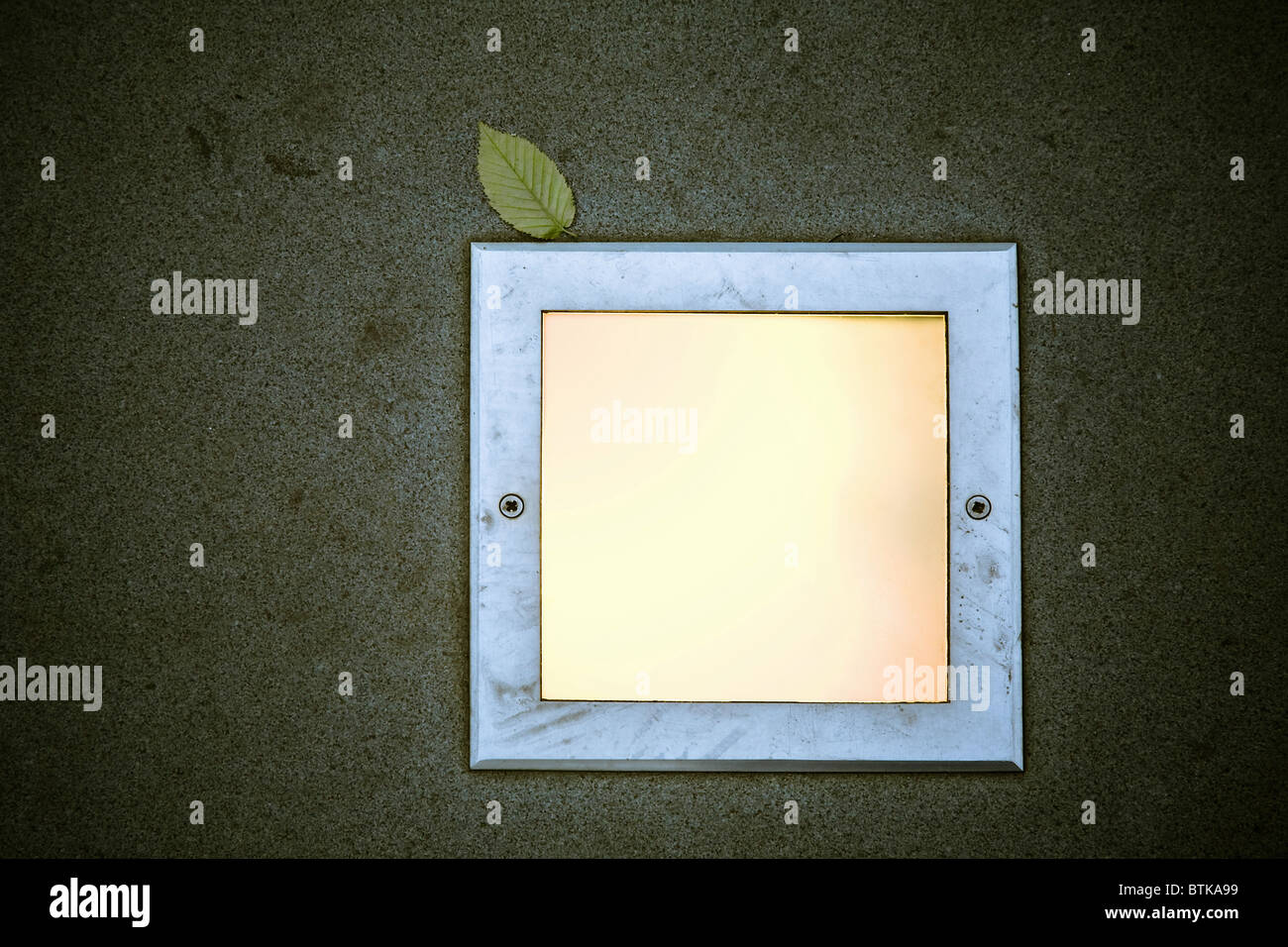ground light and green leaf - Stock Image
